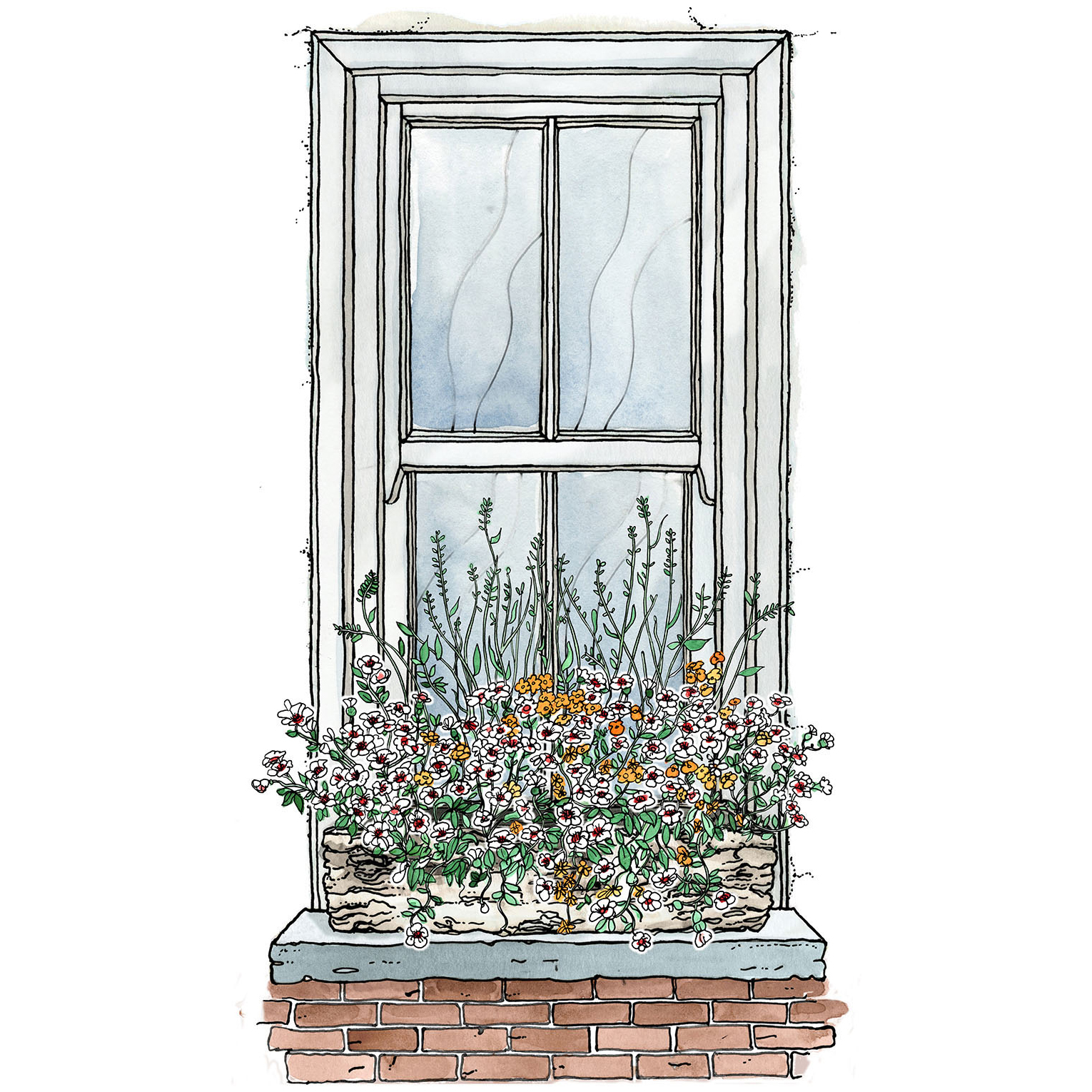illustration of a window box filled with flowers