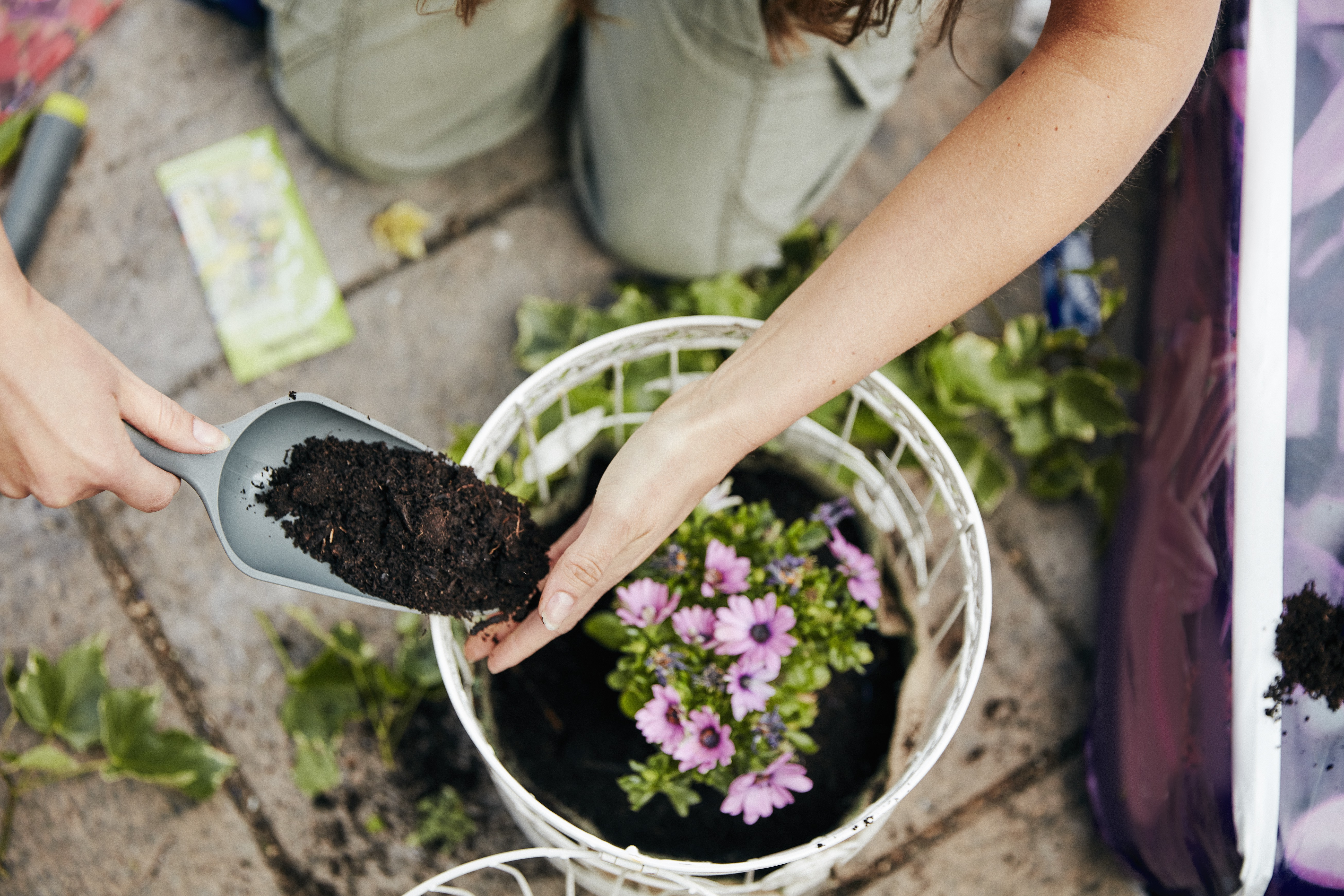 mulching-benefits-getty-0319.jpg