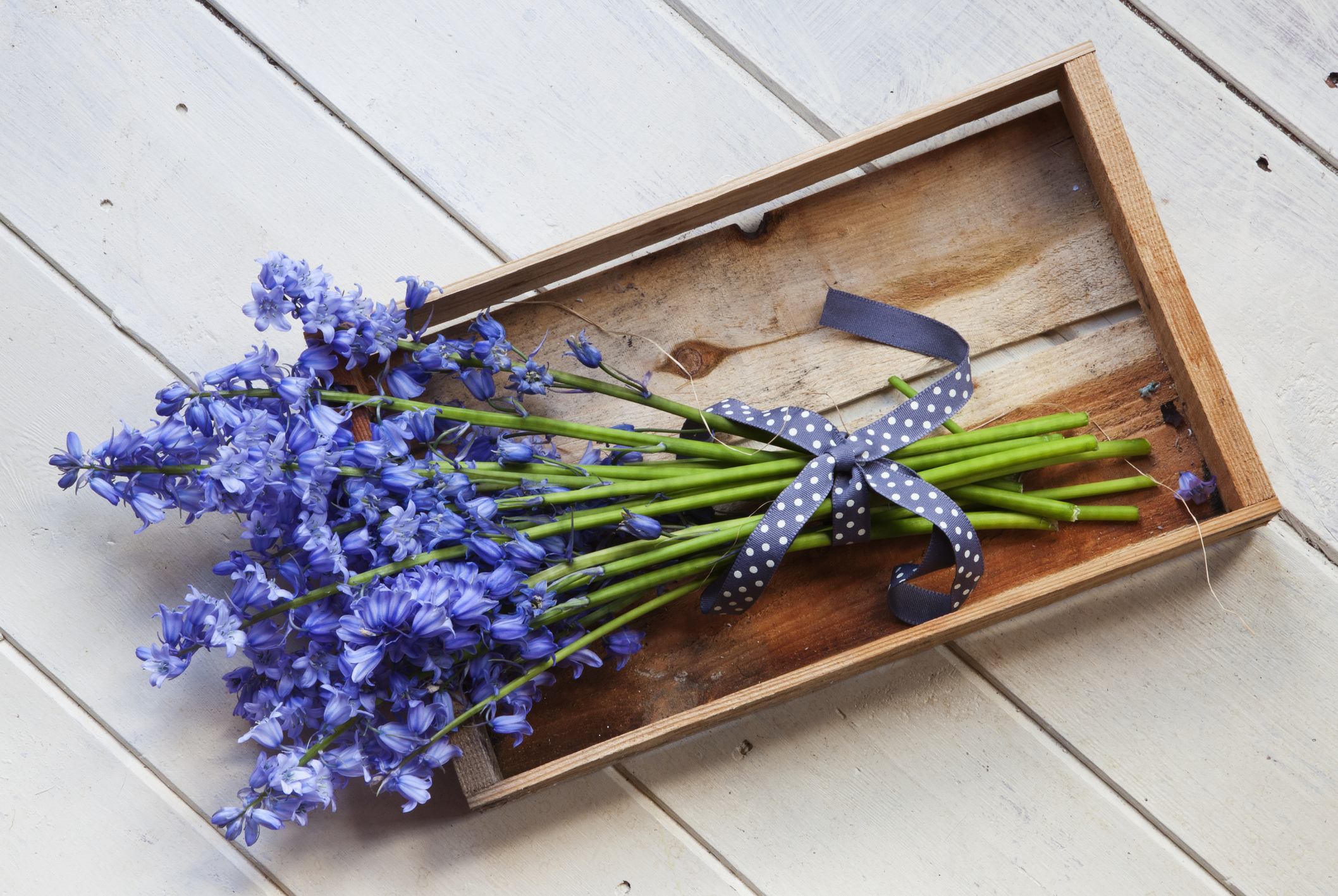 how to upgrade delivery blooms