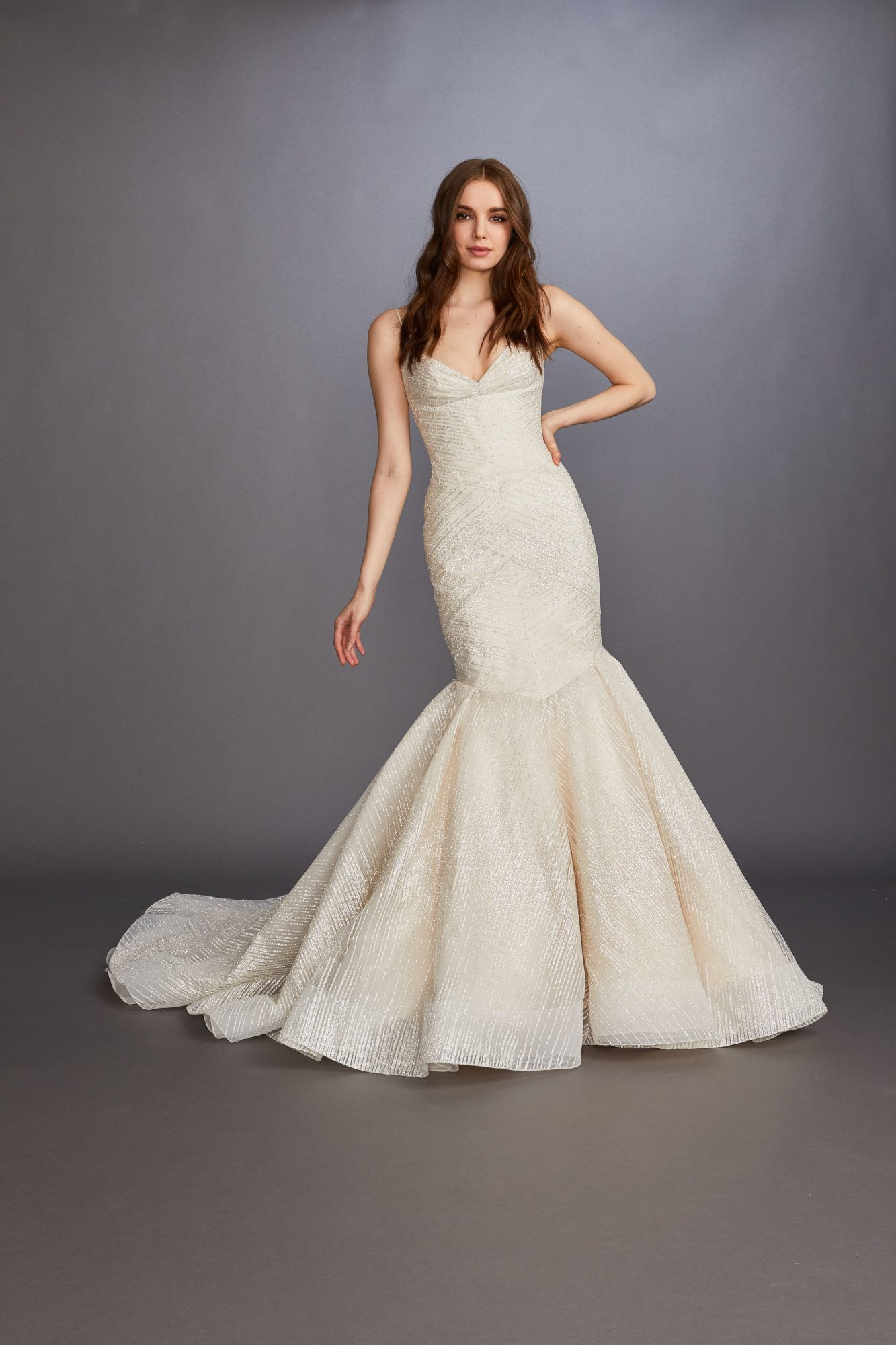 spaghetti strap v-neck glitter mermaid wedding dress Lazaro Spring 2020