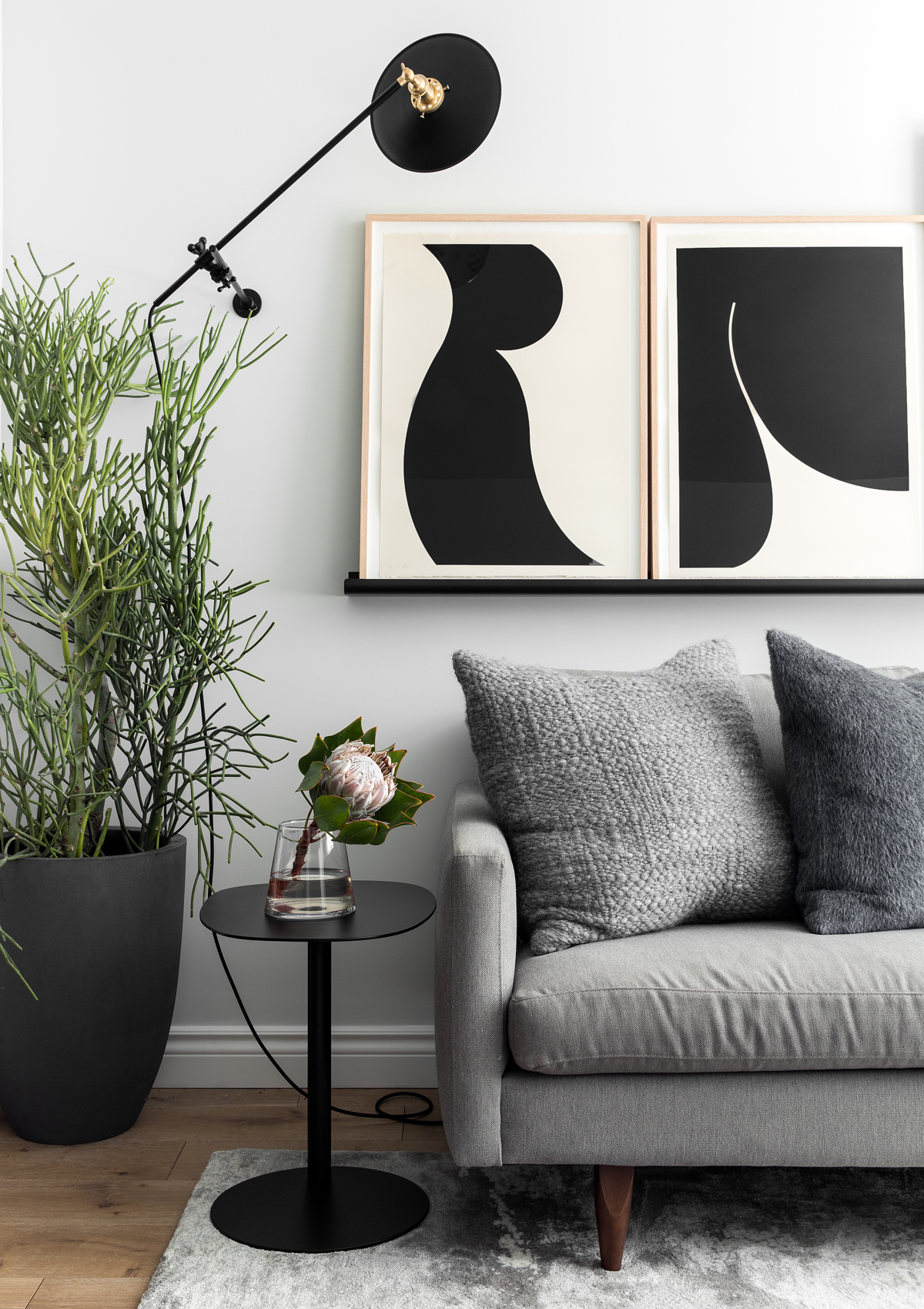 living room with grey couch and pencil cactus