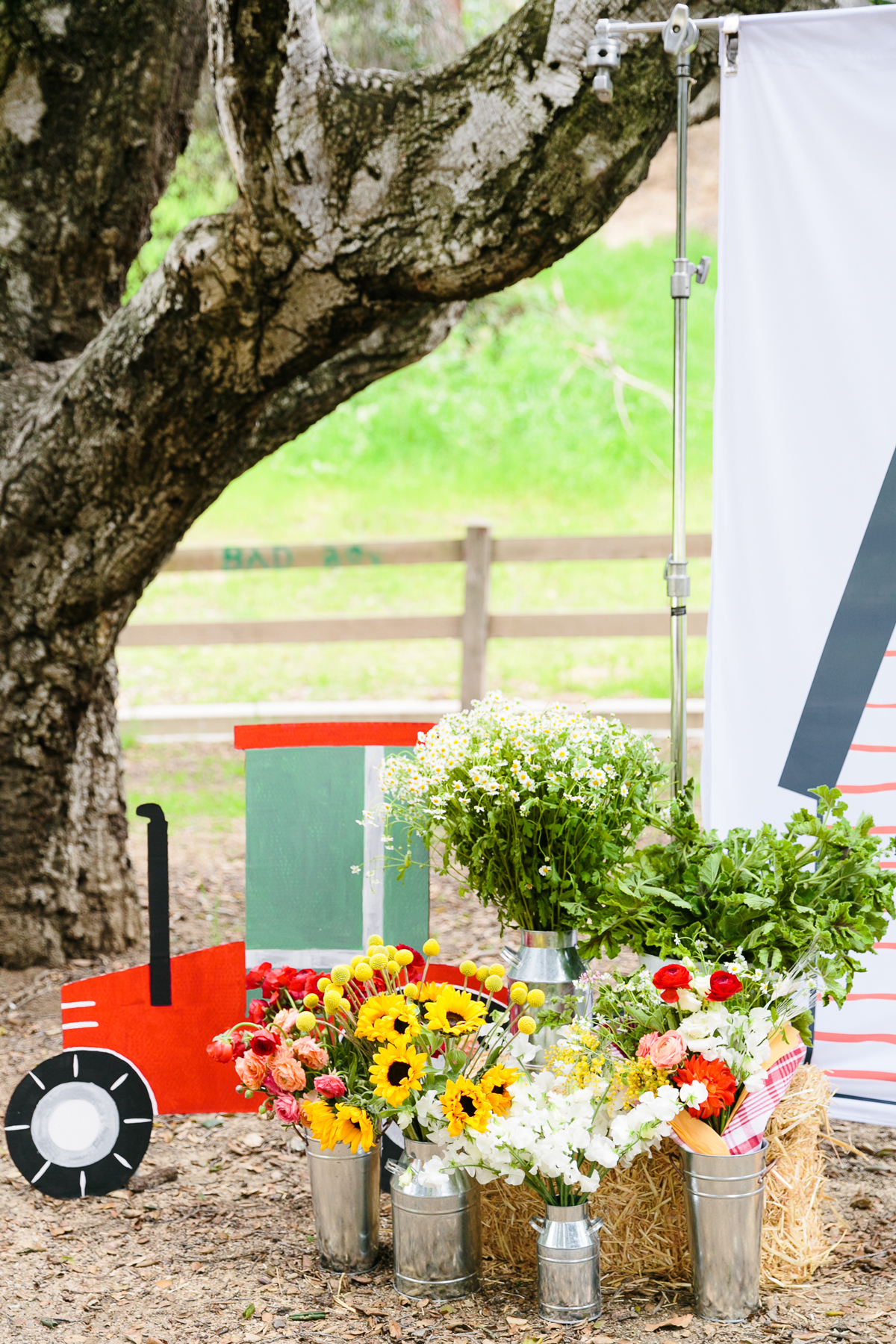 charlottes web childrens party outdoor photo booth with tractor cutout and flowers