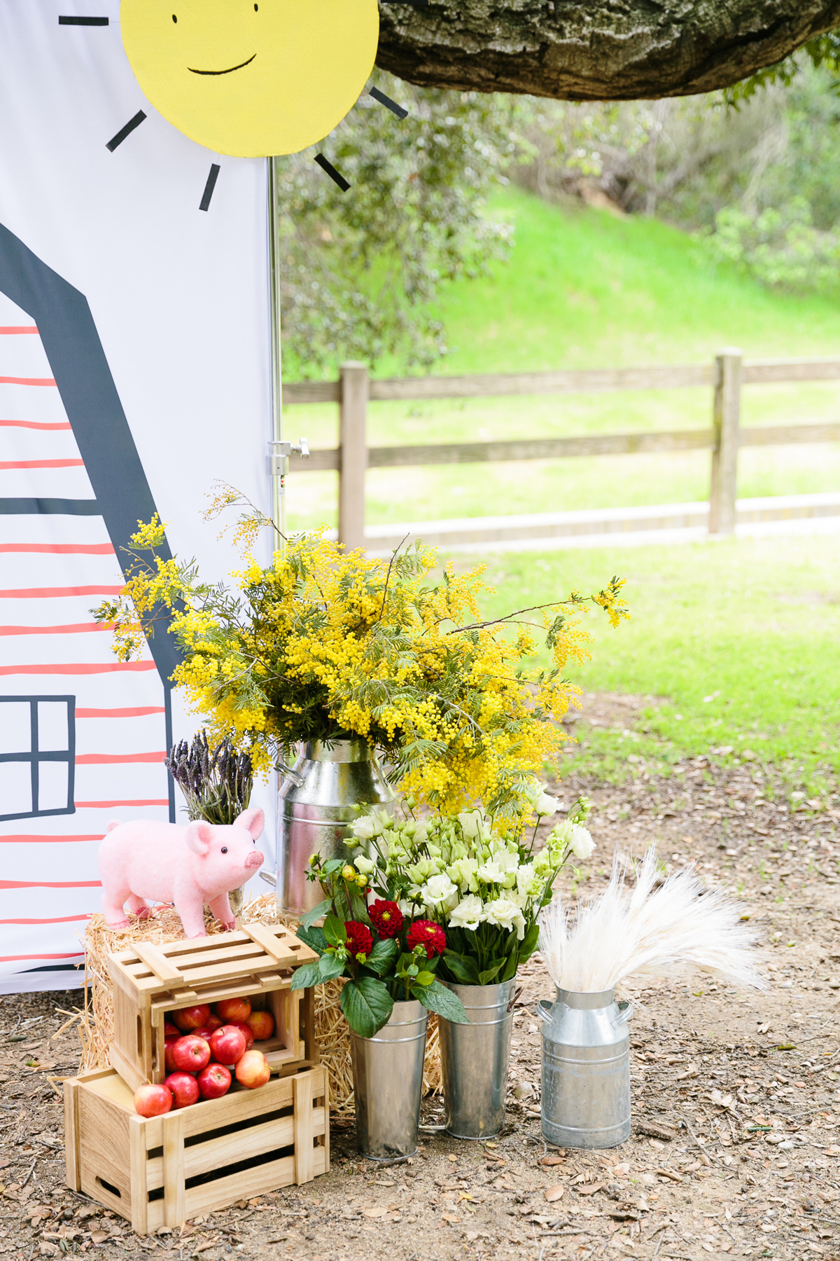 charlottes web childrens party outdoor photo booth with crate of apples and pig stuffed animal