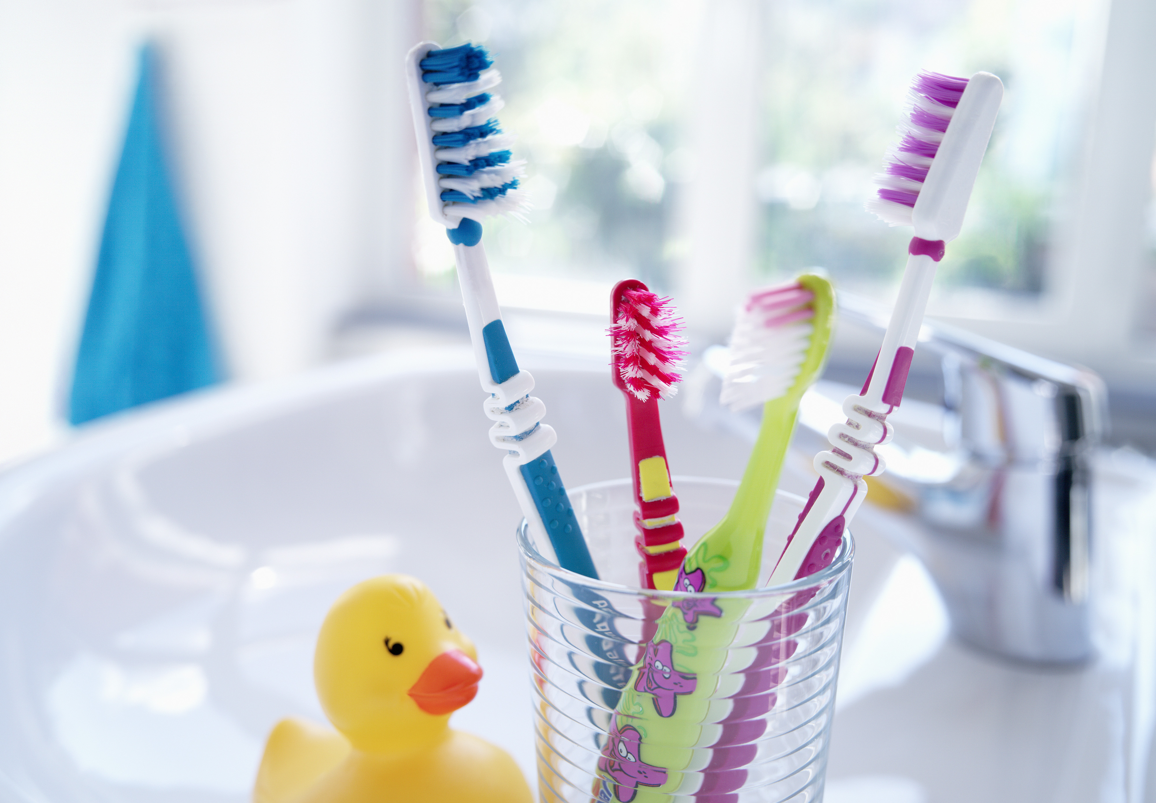 Toothbrushes in Cup on Countertop