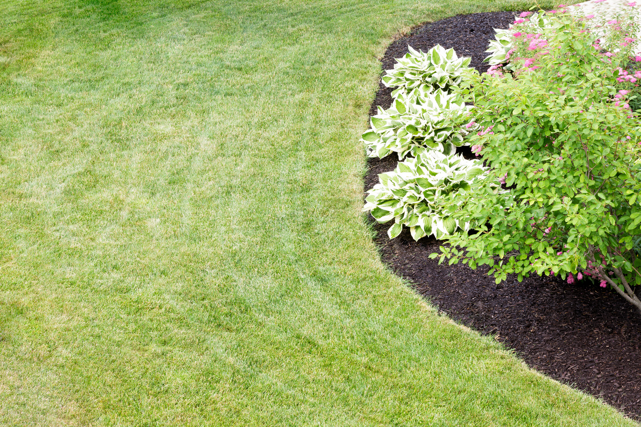 best time to mulch lawn with manicured flower bed
