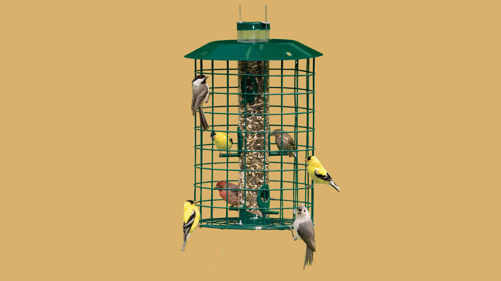 duncraft tube bird feeder
