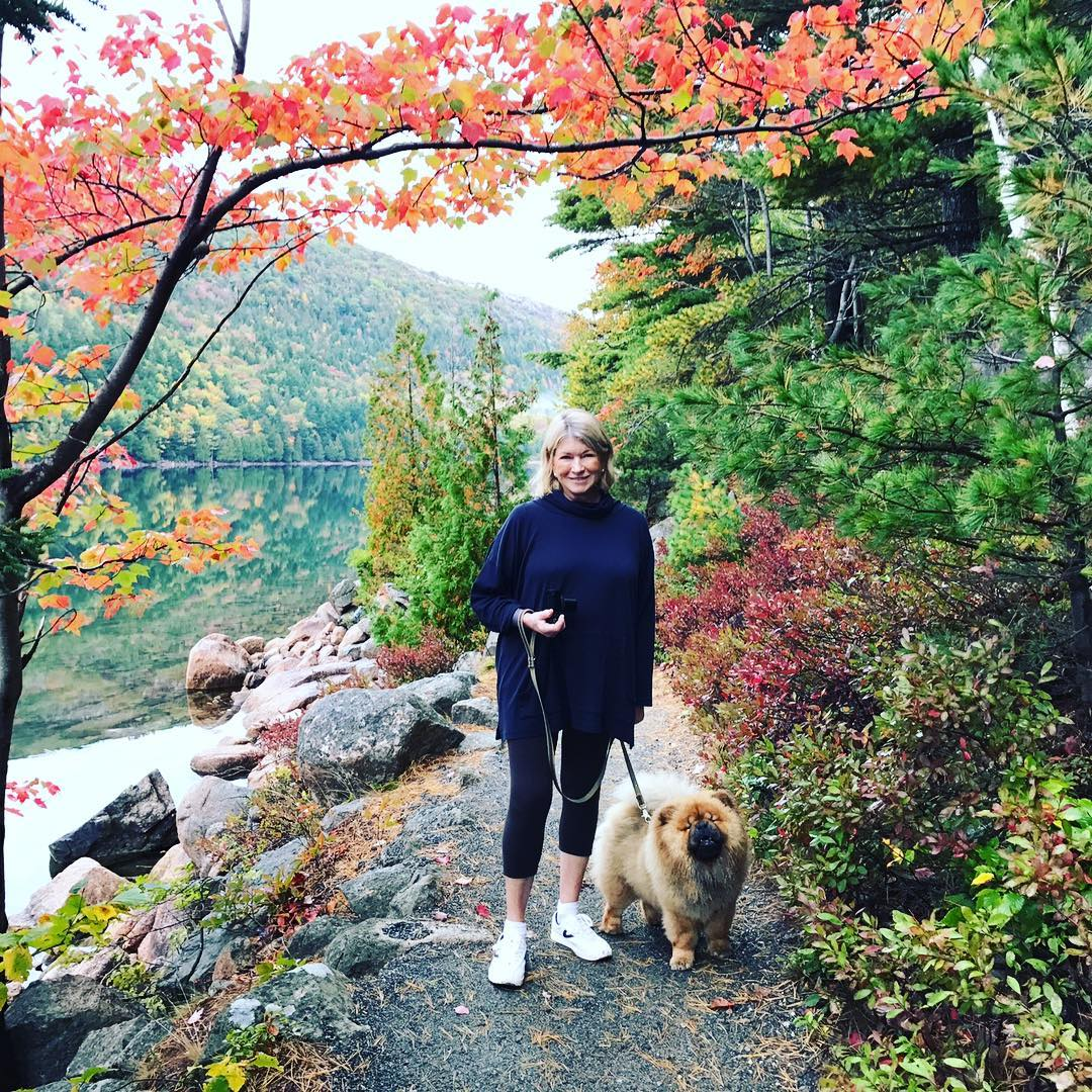 martha stewart with dog at acadia national park in maine
