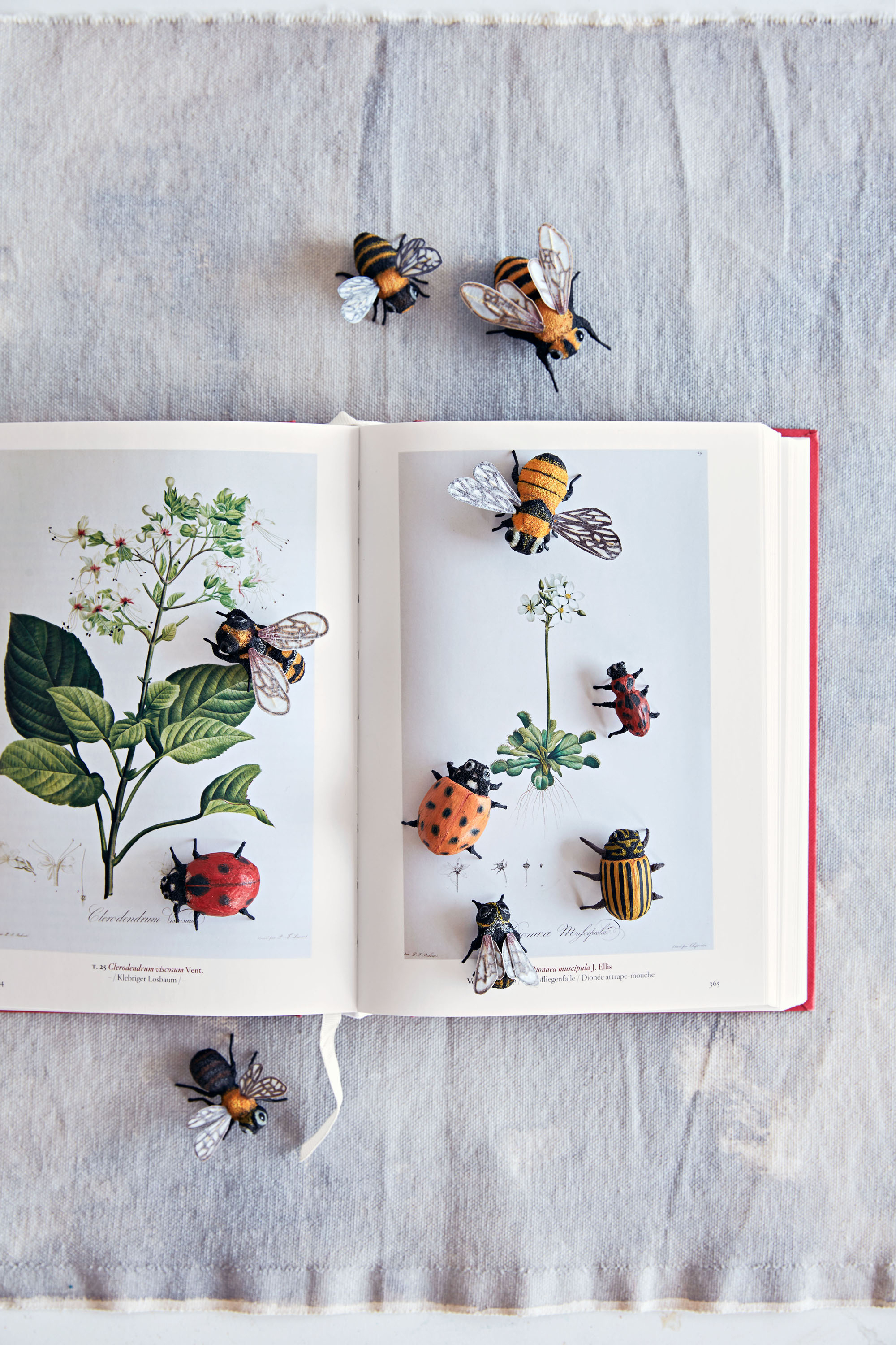 an open botanical book with sculptural paper insects