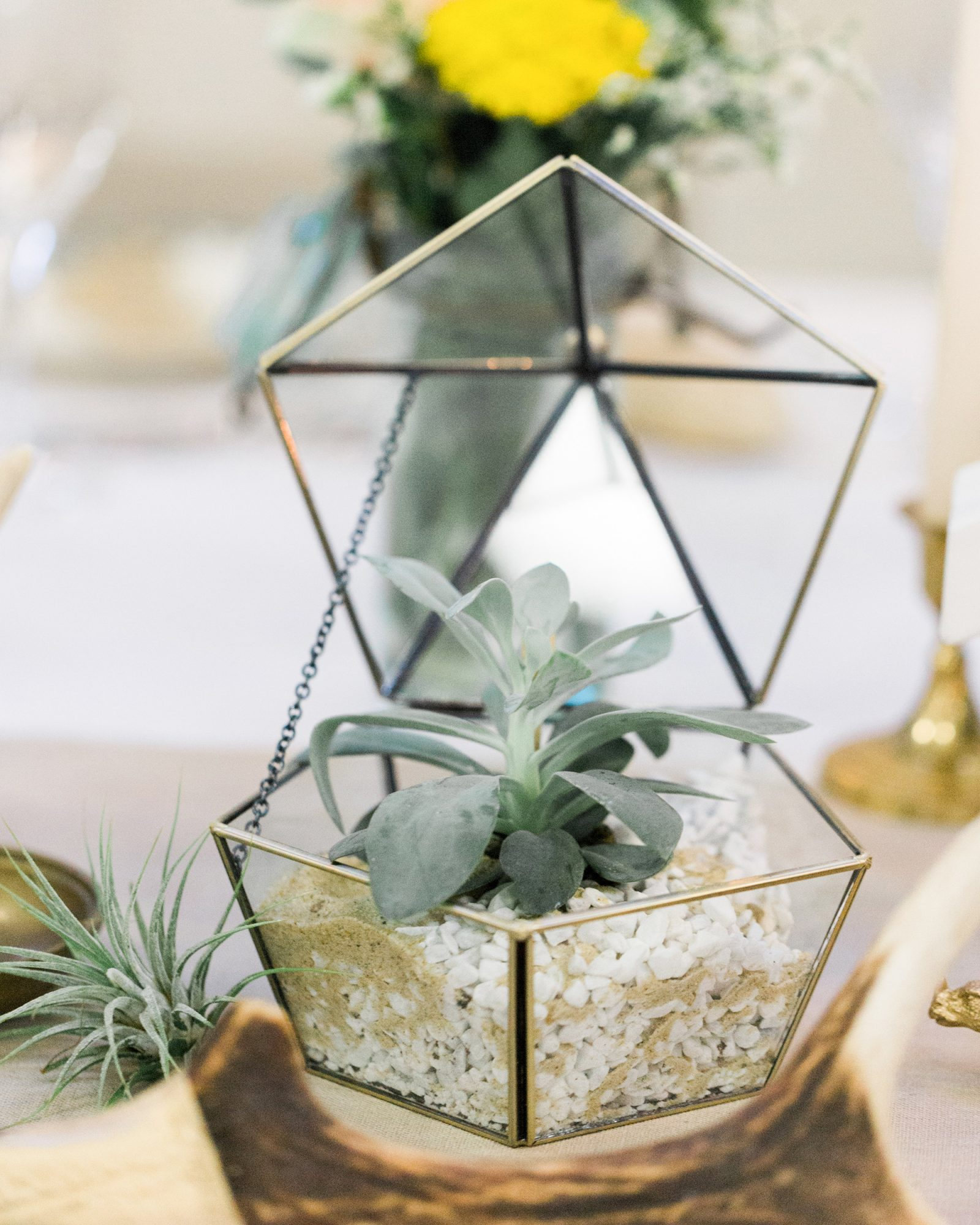 small terrarium wedding ideas