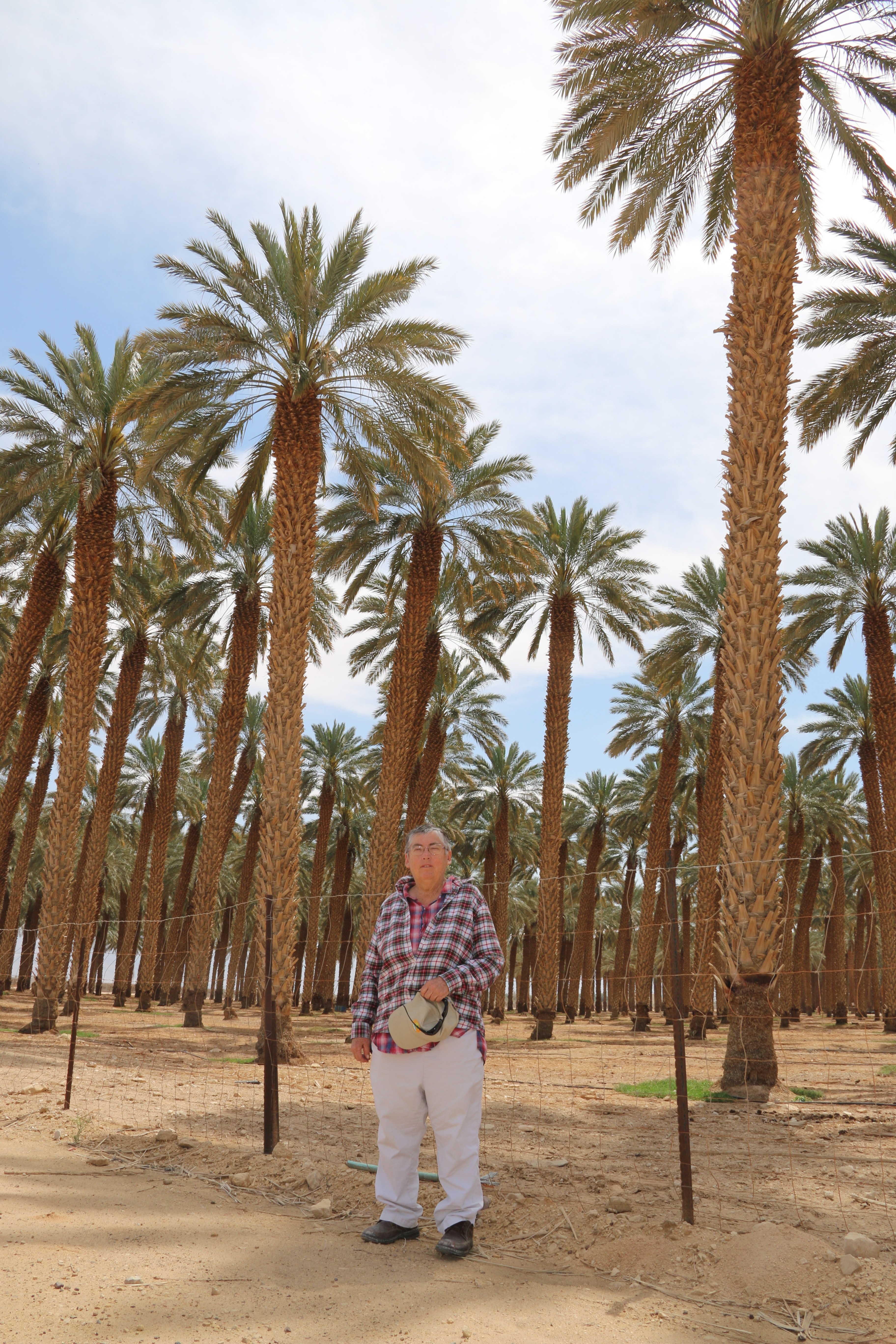Dr. Elaine Solowey, Director of the Center for Sustainable Agriculture at the Arava Institute in Ktura,