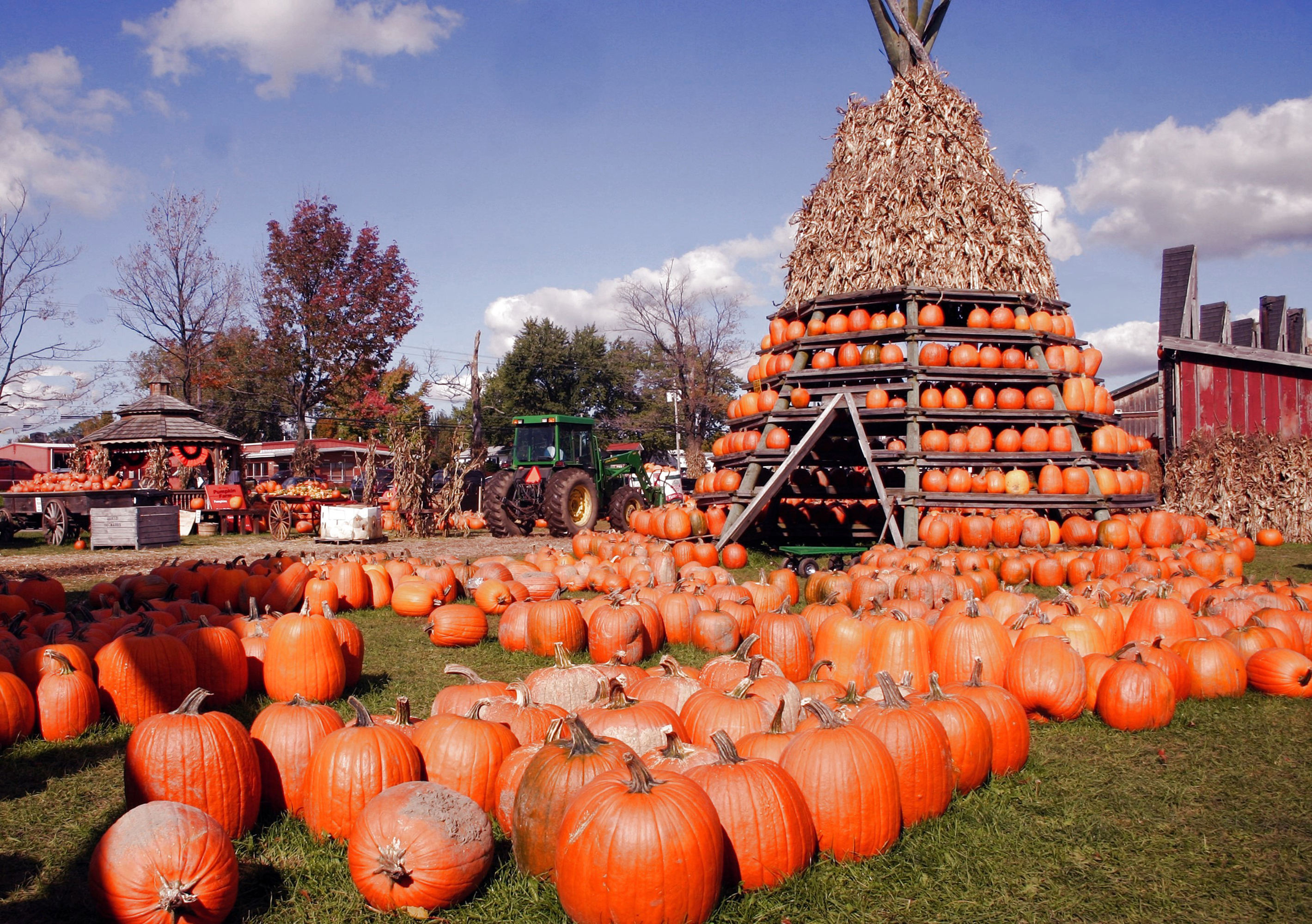 A Pumpkin Hut at the Great Pumpkin Festival