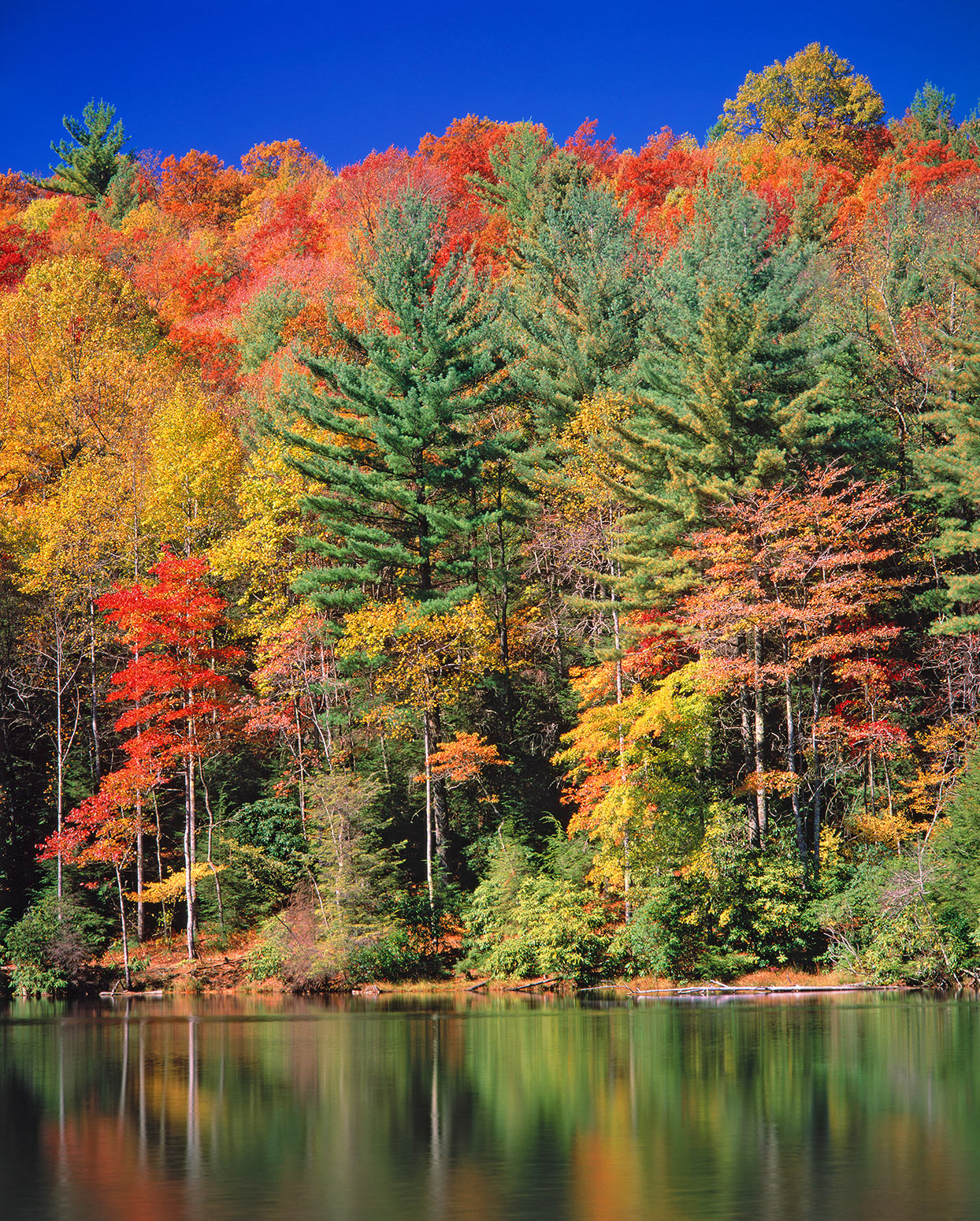 Chattahoochee National Forest, Georgia, Lake Conasauga, autumn