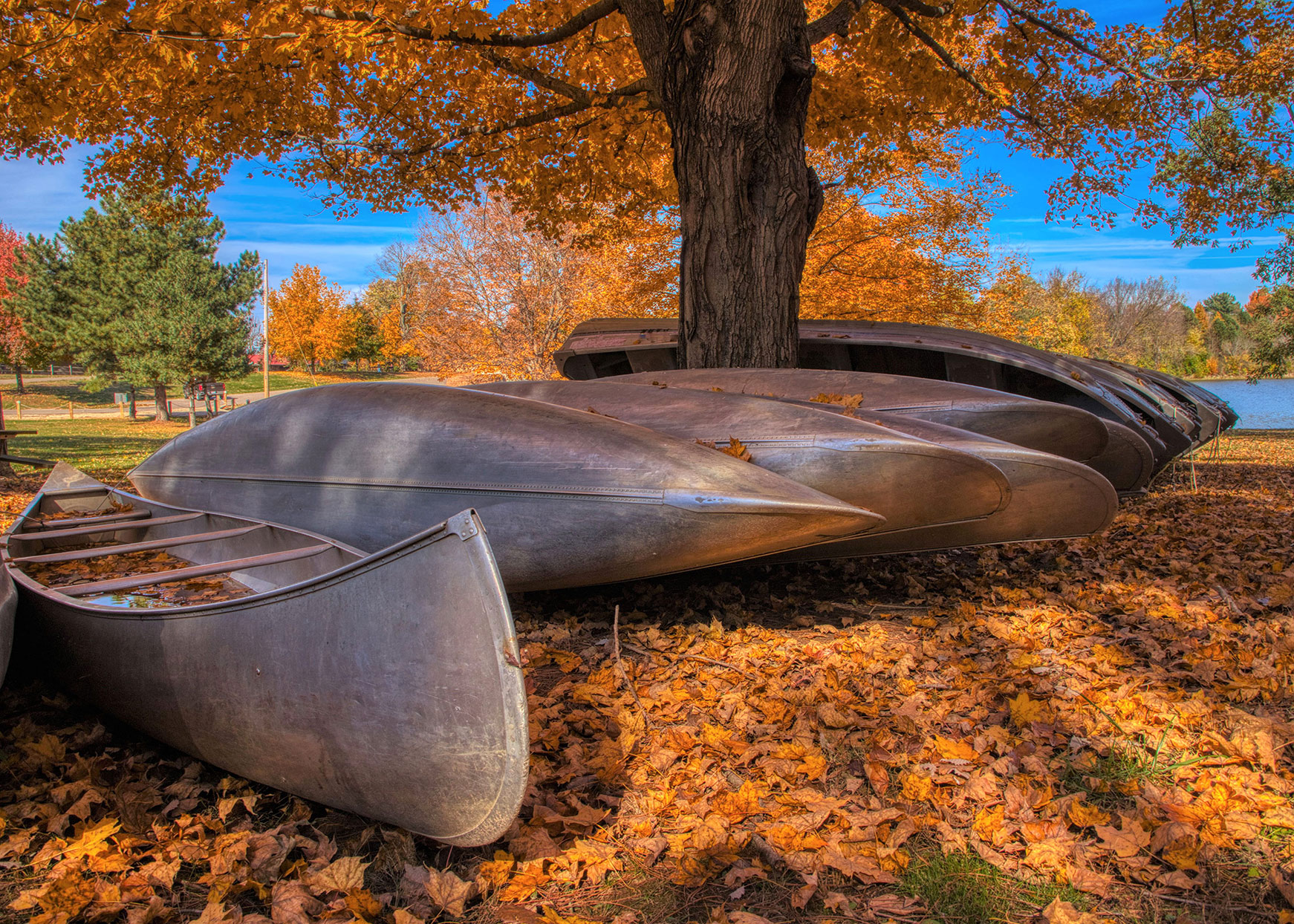canoes in Buckhorn, Kentucky in the fall