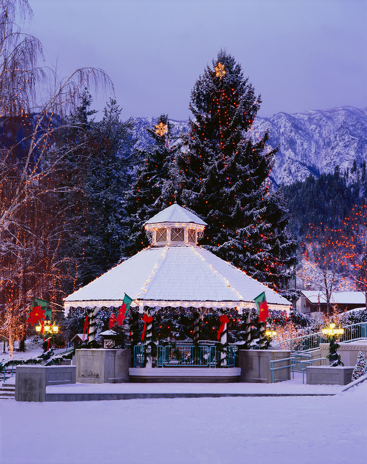 Leavenworth gazebo & large pine trees with lights