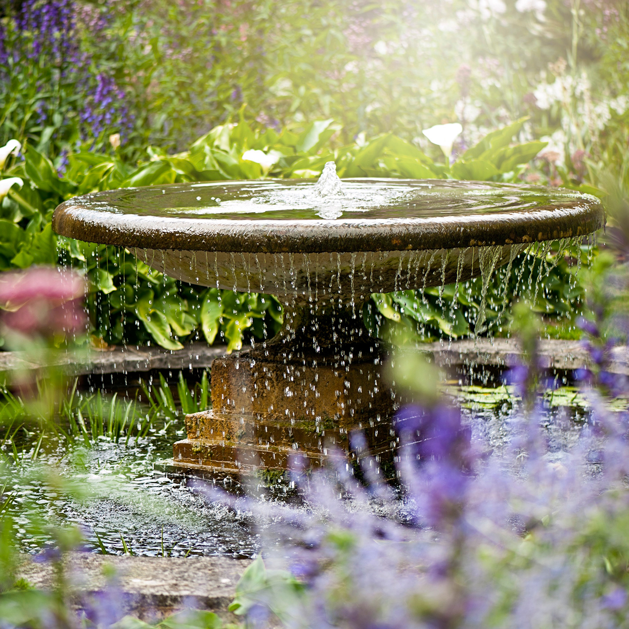 stone water fountain and purple flowers