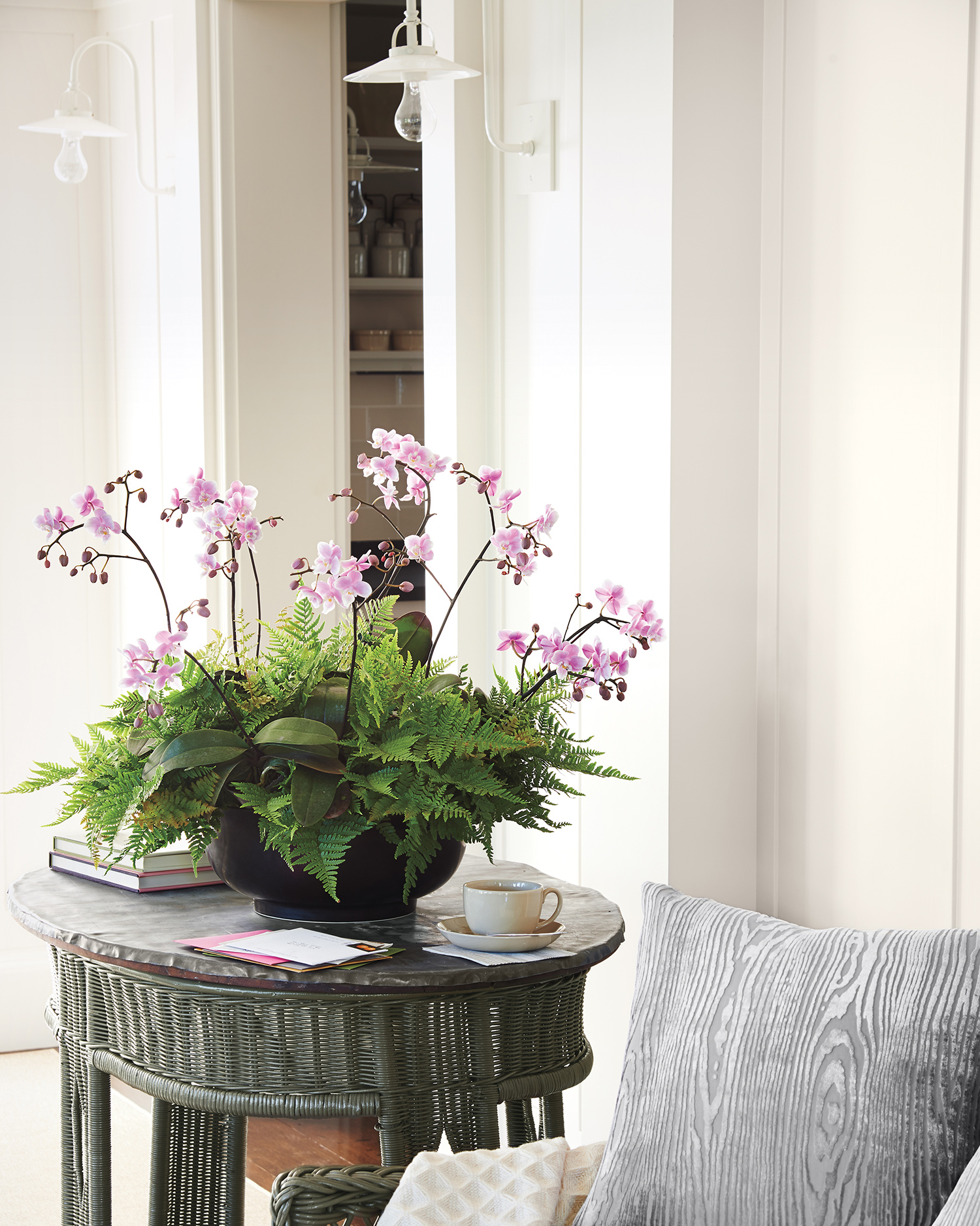 orchids on side table