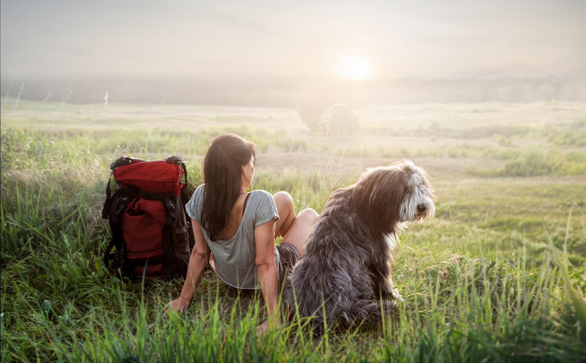 woman and dog sitting in grass at sunrise