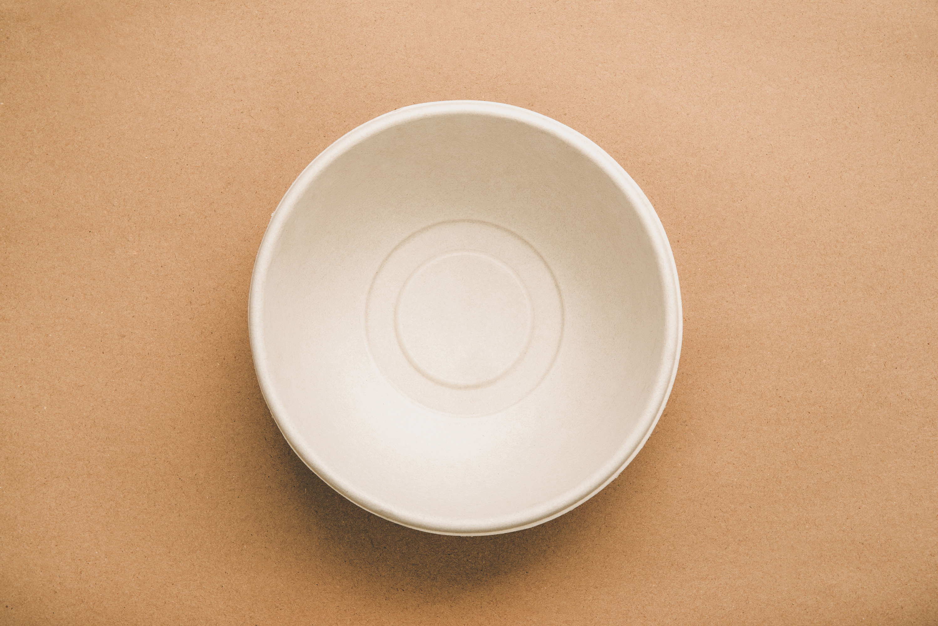 Compostable Bowl Biodegradable