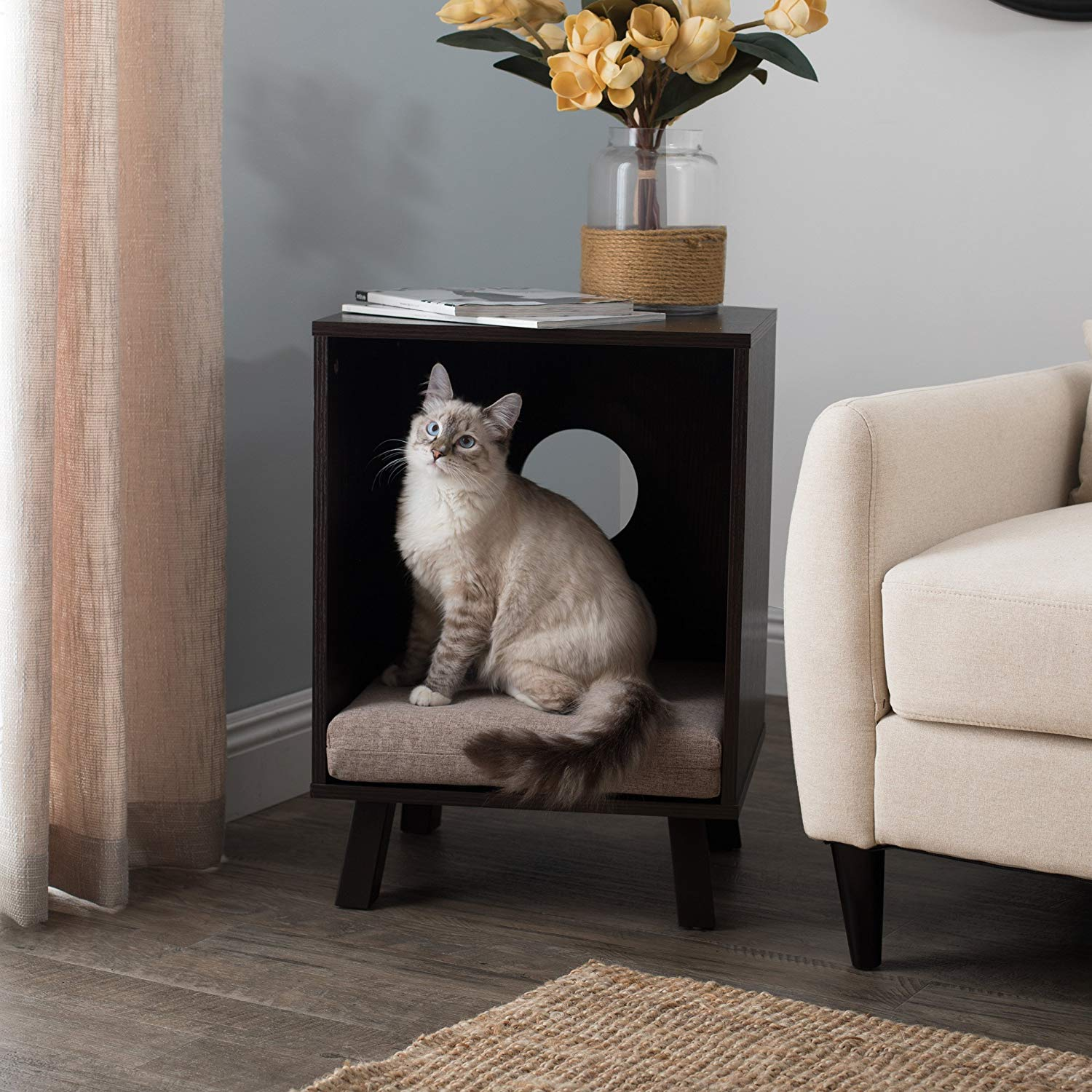 Paws & Purrs Pet Bed and End Table