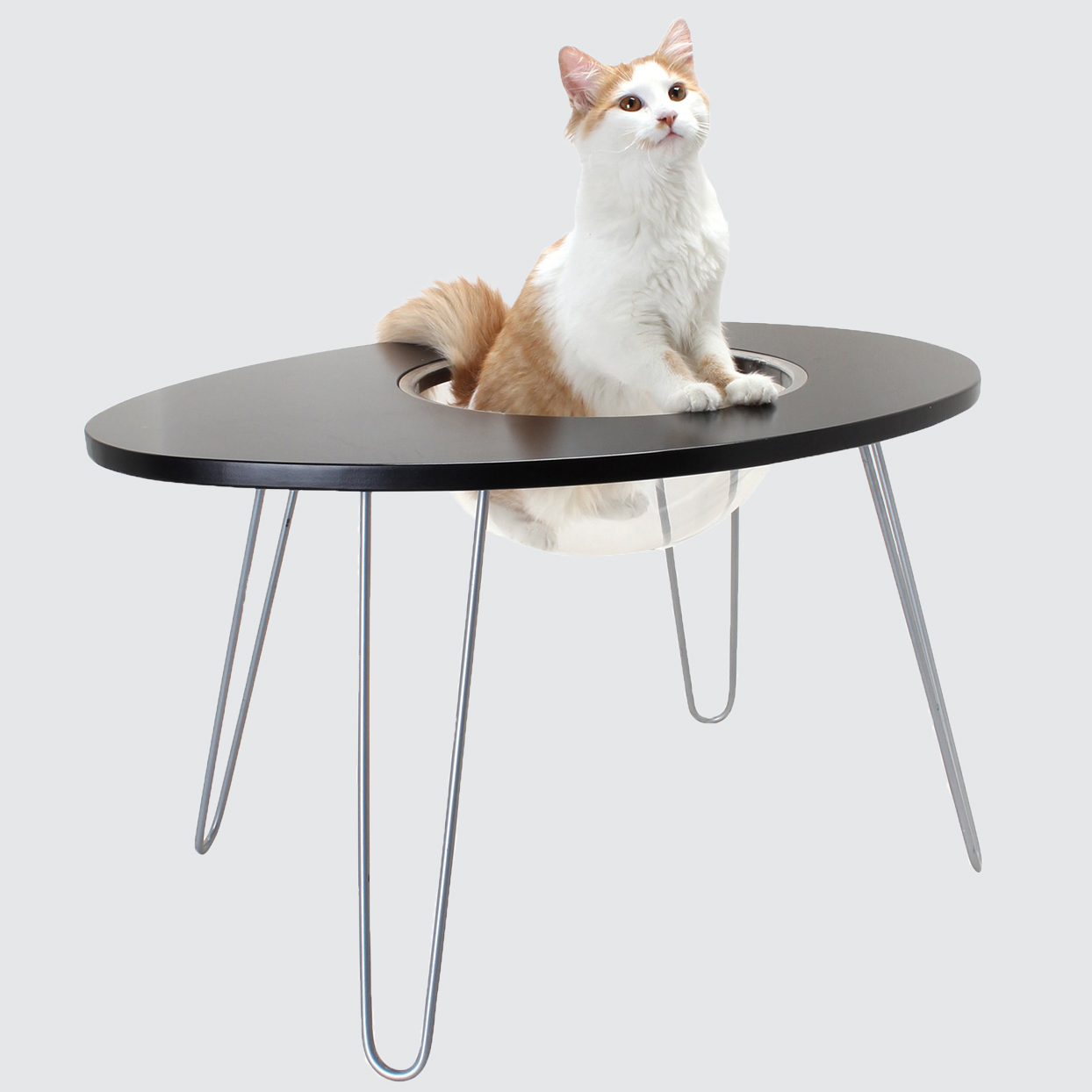 Hauspanther Nest Egg Raised Cat Bed and Side Table