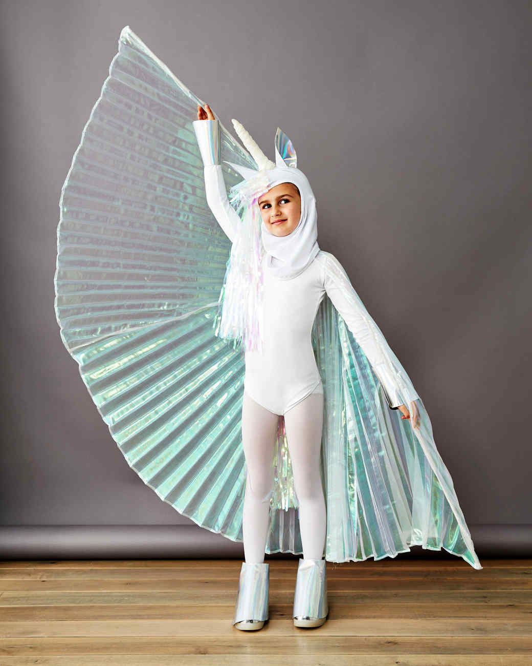 pegasus unicorn costume