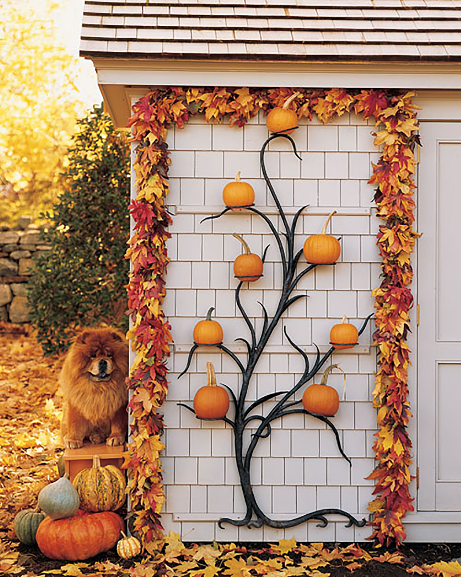 iron plant stand holding pumpkins at Martha's Bedford home