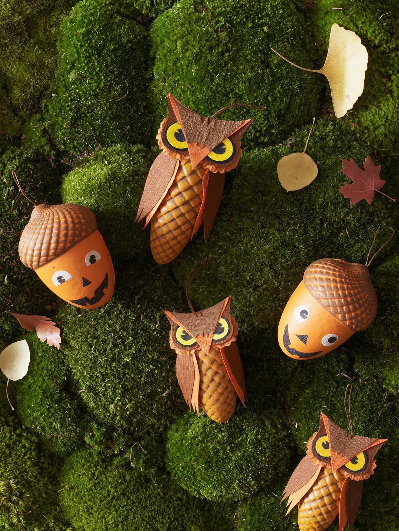 Acorn and Owl Treat Boxes