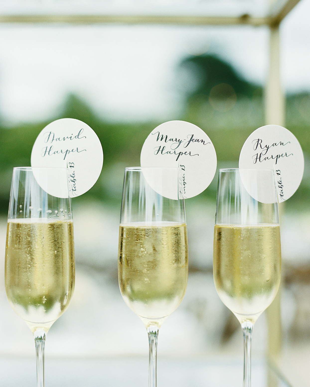 mika steve wedding champagne with name cards