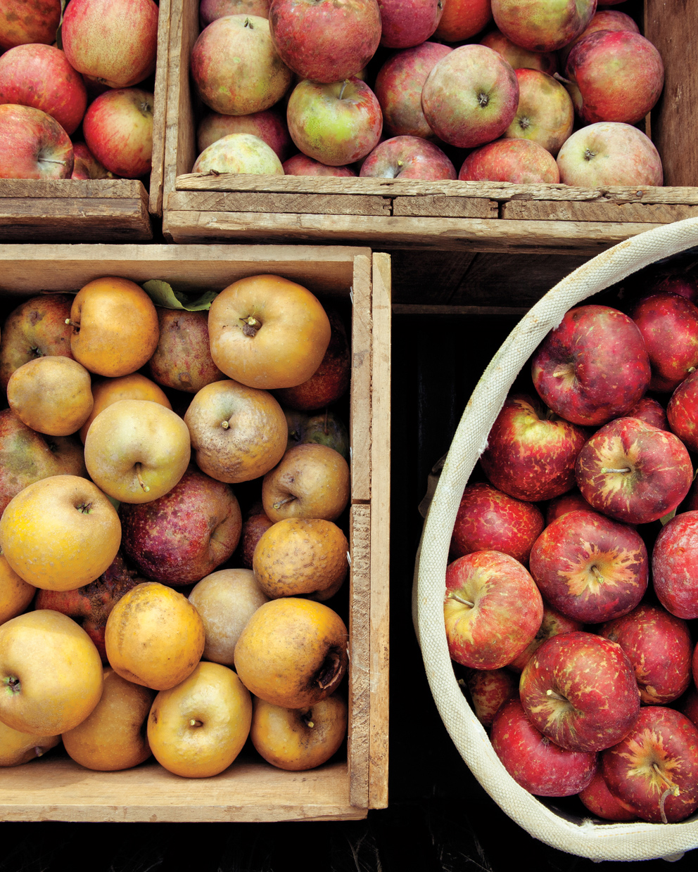 variety of apples in boxes
