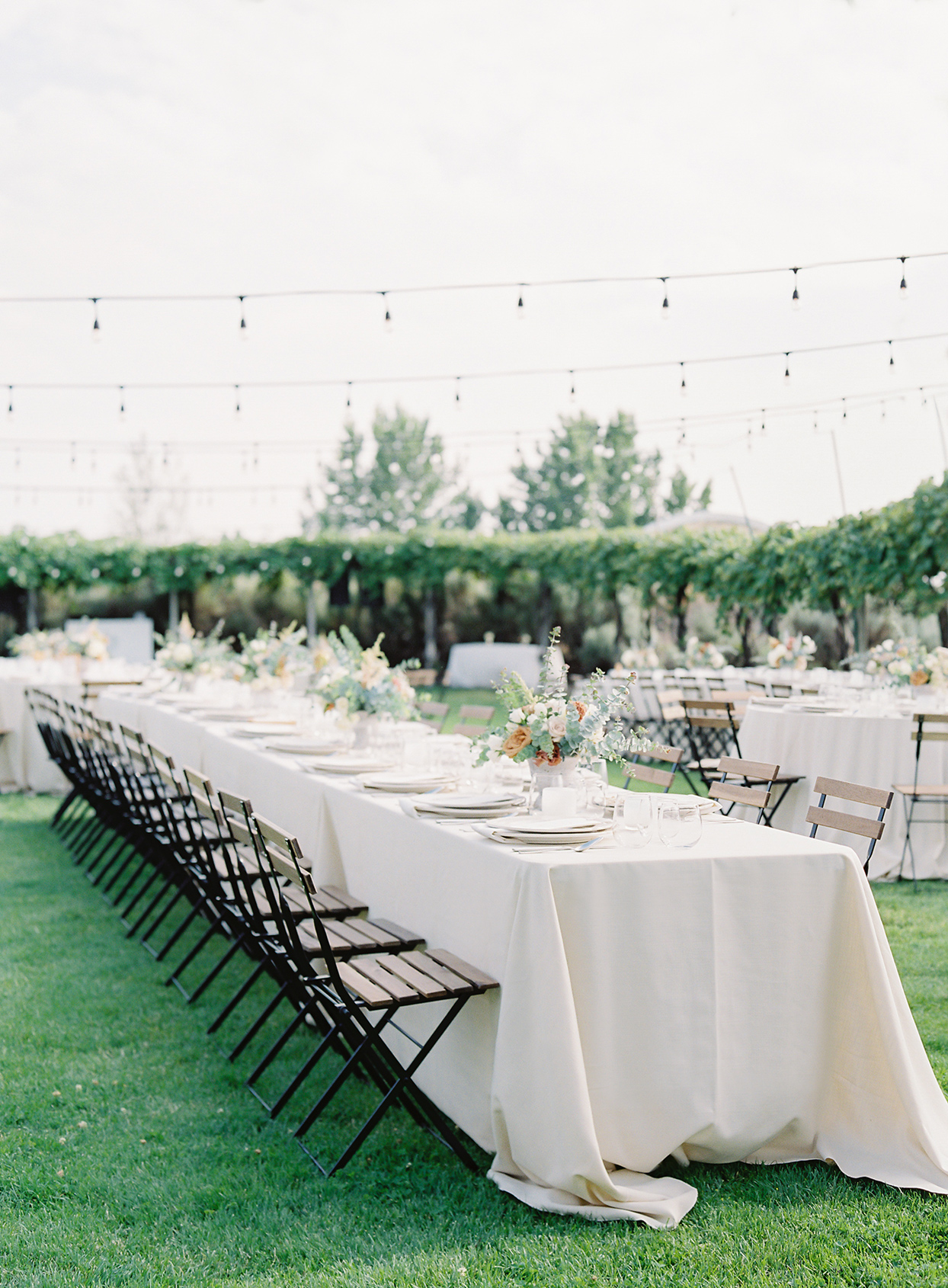 micaela curtis wedding reception long white table on lawn