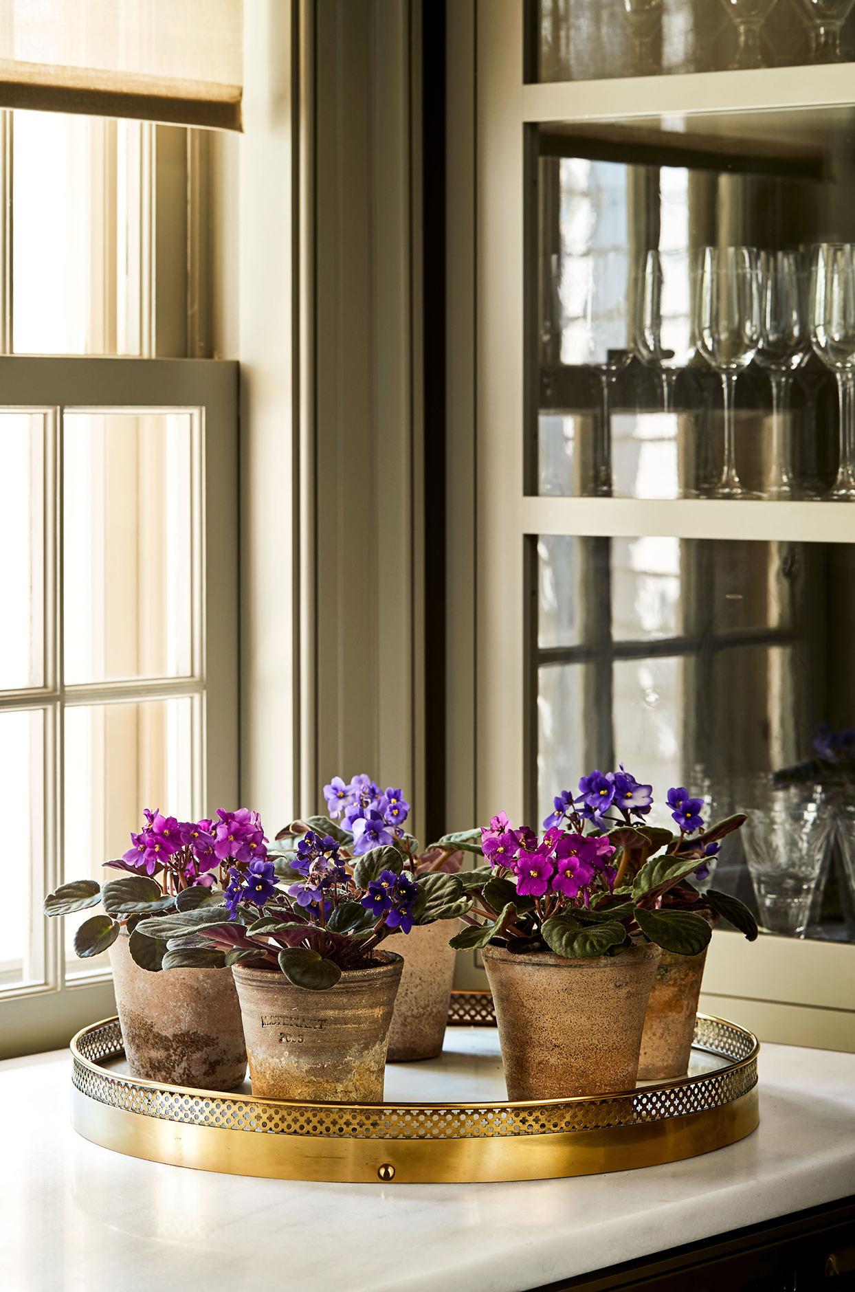 african violets in brown pots on gold tray