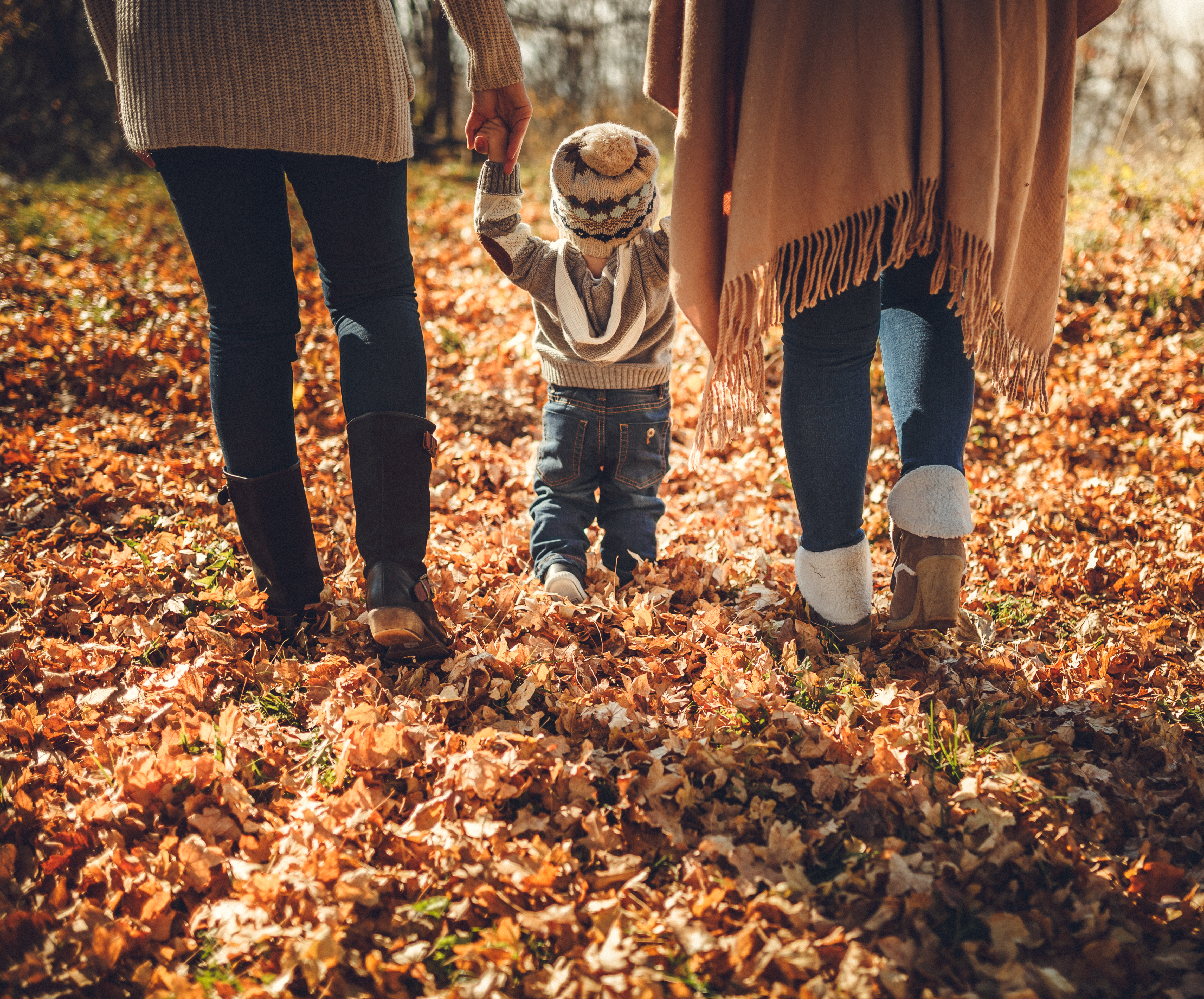 Little boy walking with parents in fall leaves