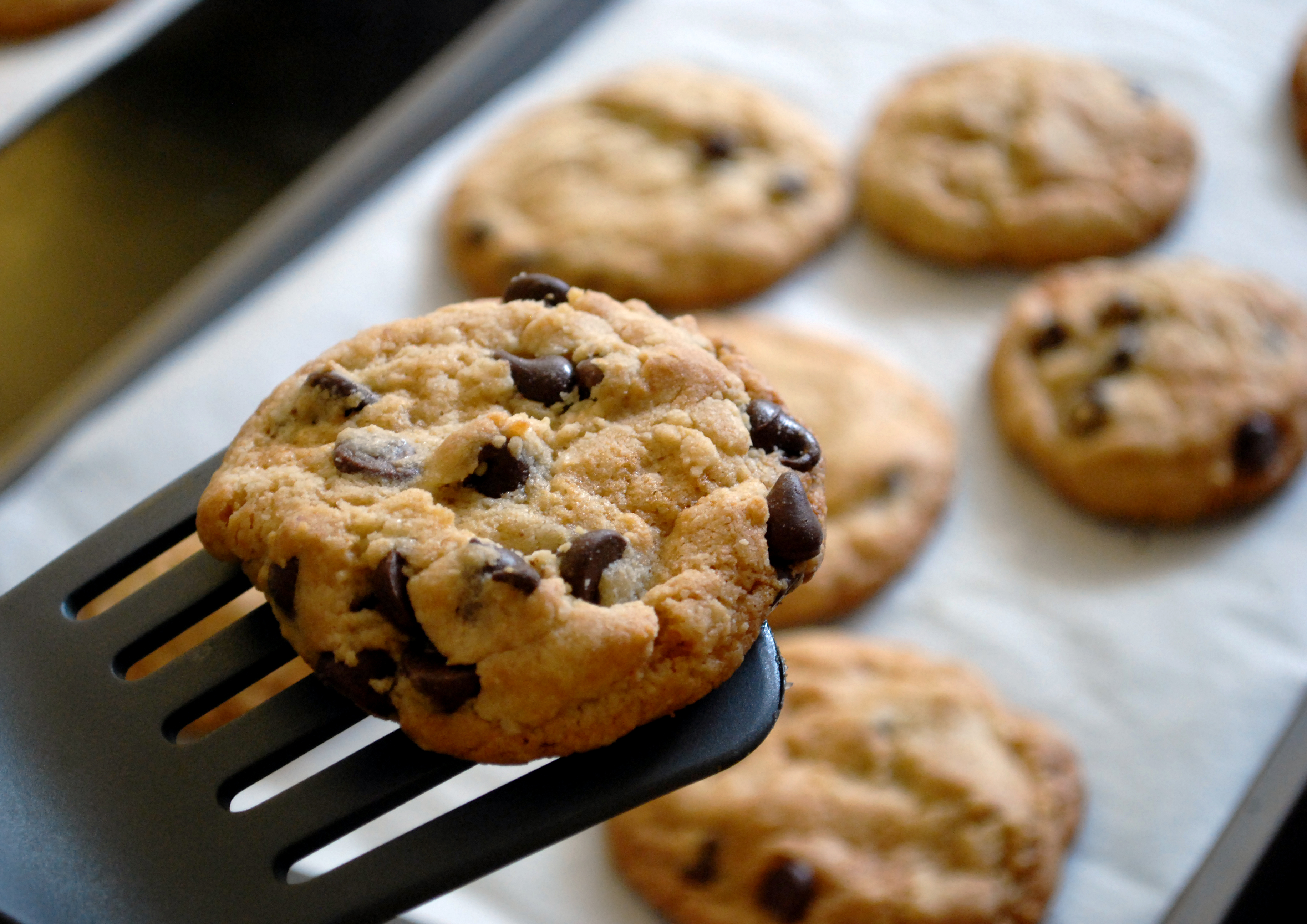 Chocolate Chip Cookies on Spatula Coming Out of Oven