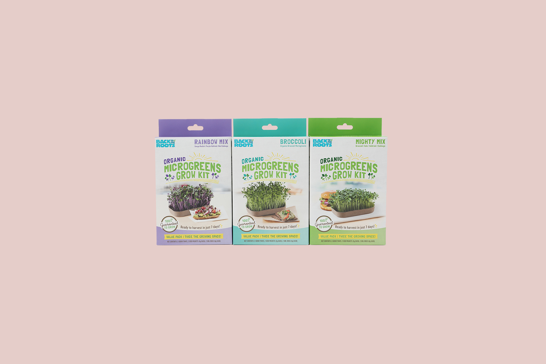 Back to the Roots Organic Microgreens Kit