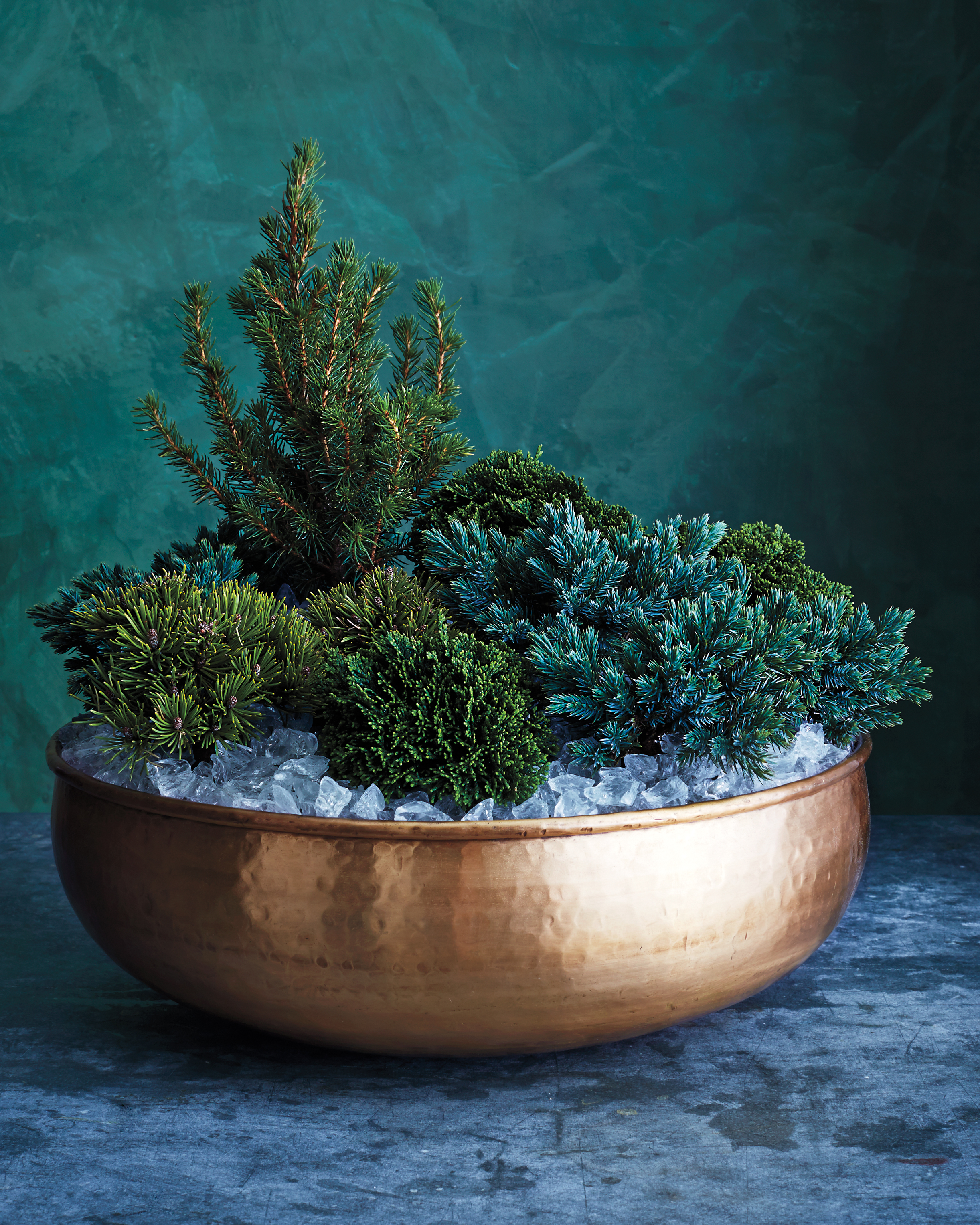 Welcome guests with this elegant assortment of outdoor plants. A large brass bowl and ice-like glass mulch elevate the grouping. Get started by placing a thin layer of mulch at the bottom of the bowl; then arrange conifers (in original plastic nursery pots) in the bowl. Position tallest plant slightly off-center in back to anchor its composition. Fill in with rest of plants, leaving an inch around rim. Finally, add bits of bubble packaging to keep pots in place, then finish with a top layer of mulch. Be sure to keep it in a protected location outdoors. If temperature drops below 20 degrees, move it to a garage or other unheated, sheltered location.Shop Now: Jamali Garden Large Gold Iron Bowl, $20, jamaligarden.com. Afloral Crushed-Glass Mulch, $16 per jar, afloral.com.
