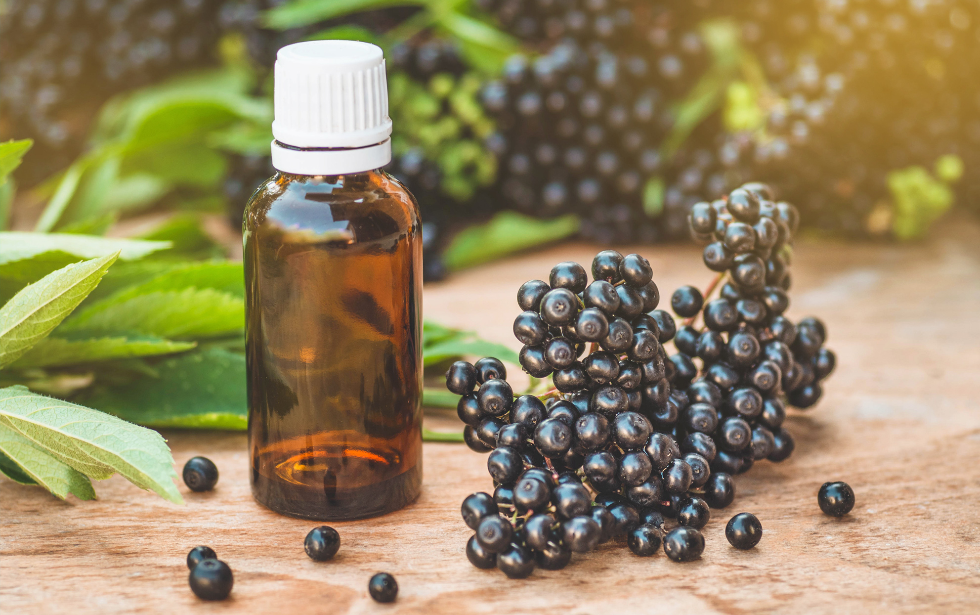 Elderberry Is the Cold-Fighting Supplement That Might Actually Work
