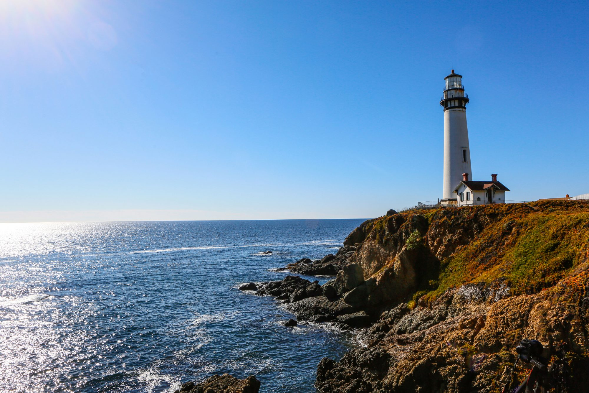 pigeon point lighthouse overlooking the water