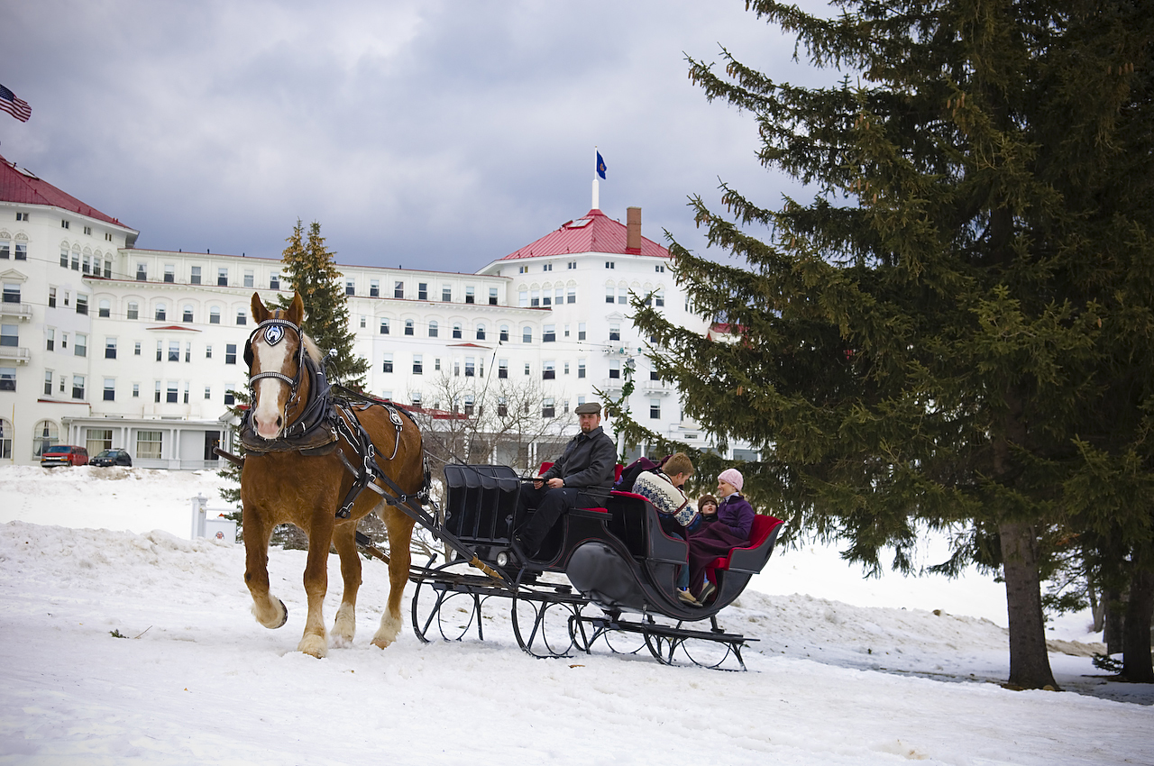 horses pulling sleigh with a building backdrop