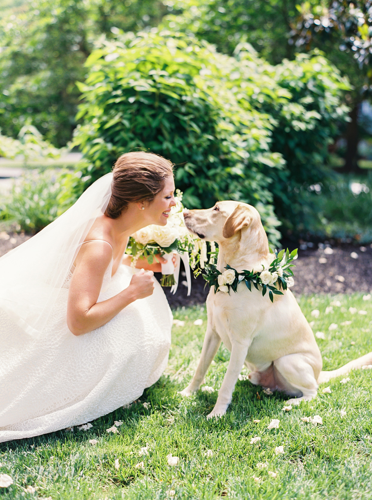 bride smiling at yellow lab wearing roses and greenery collar