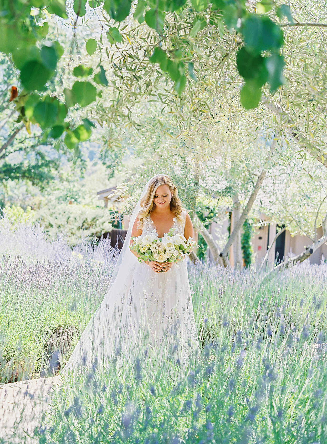 bride looking down at wedding bouquet surrounded by lavender garden