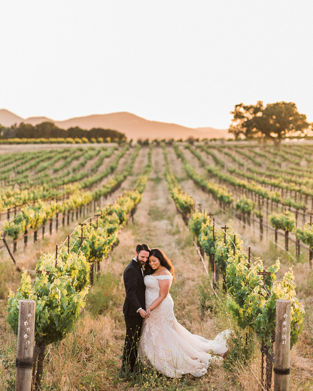 bride and groom standing in vineyard field smiling