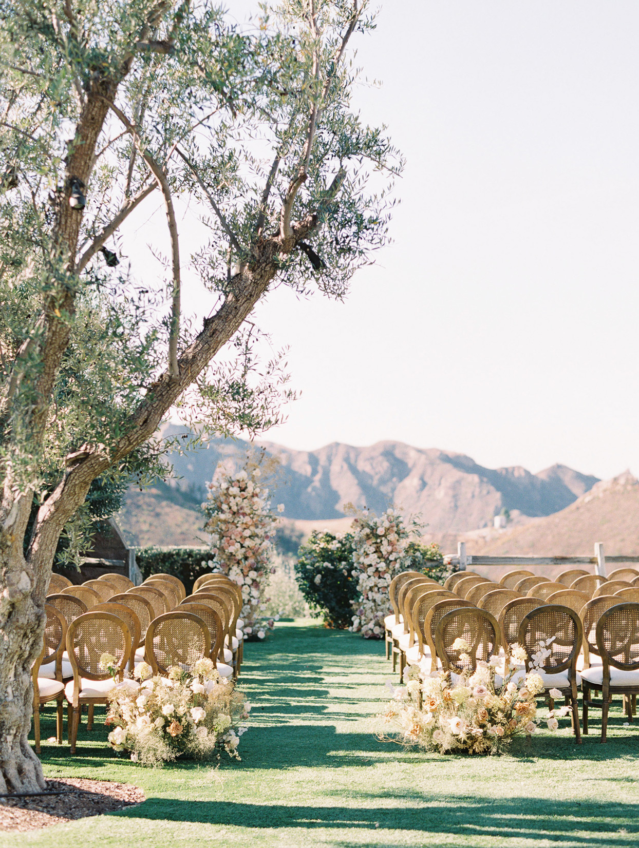 Outdoor wedding ceremony aisle with spray roses, garden roses, and dried sprigs