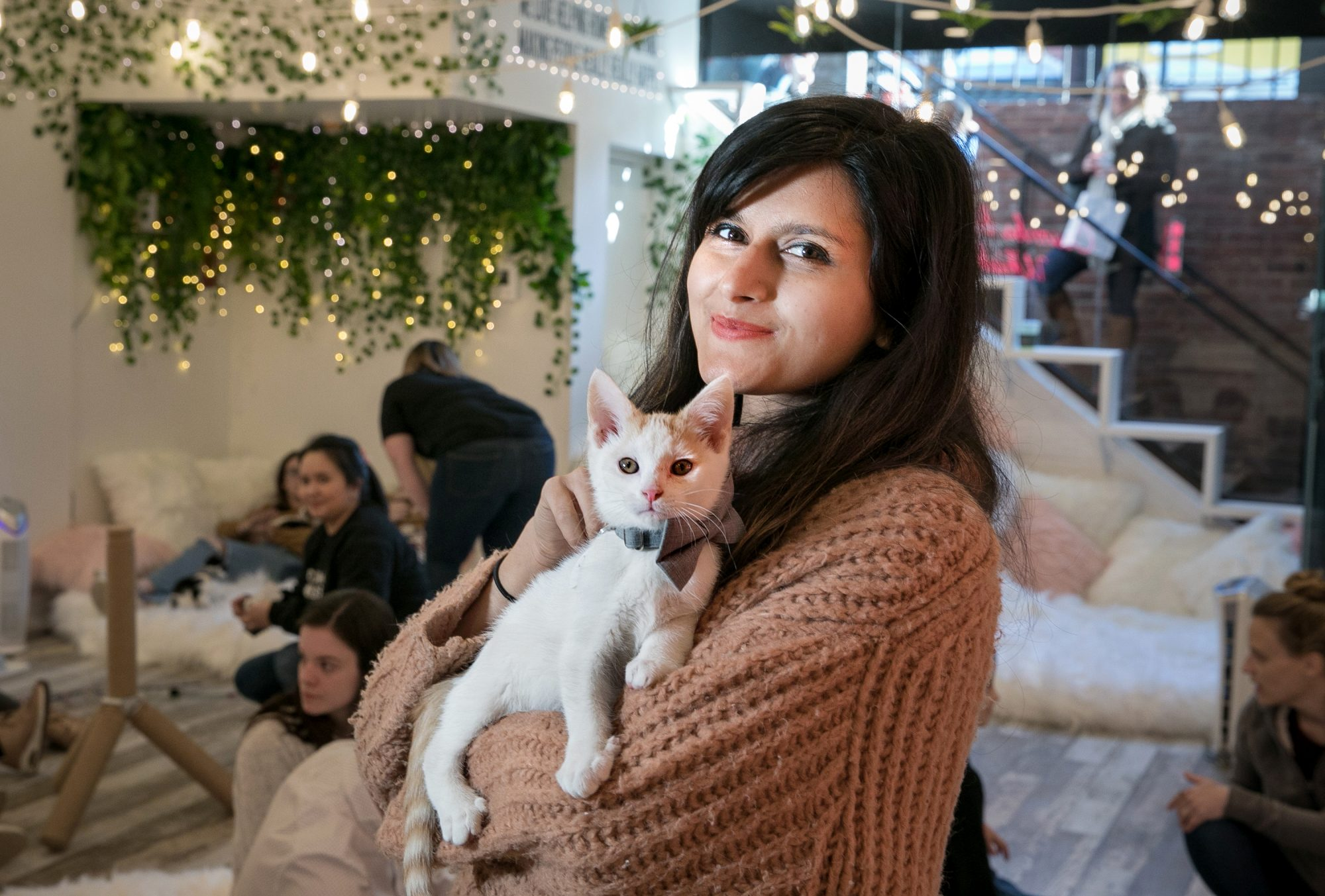 Kanchan Singh holding a kitten at the pop-up kitten lounge, Crumbs and Whiskers