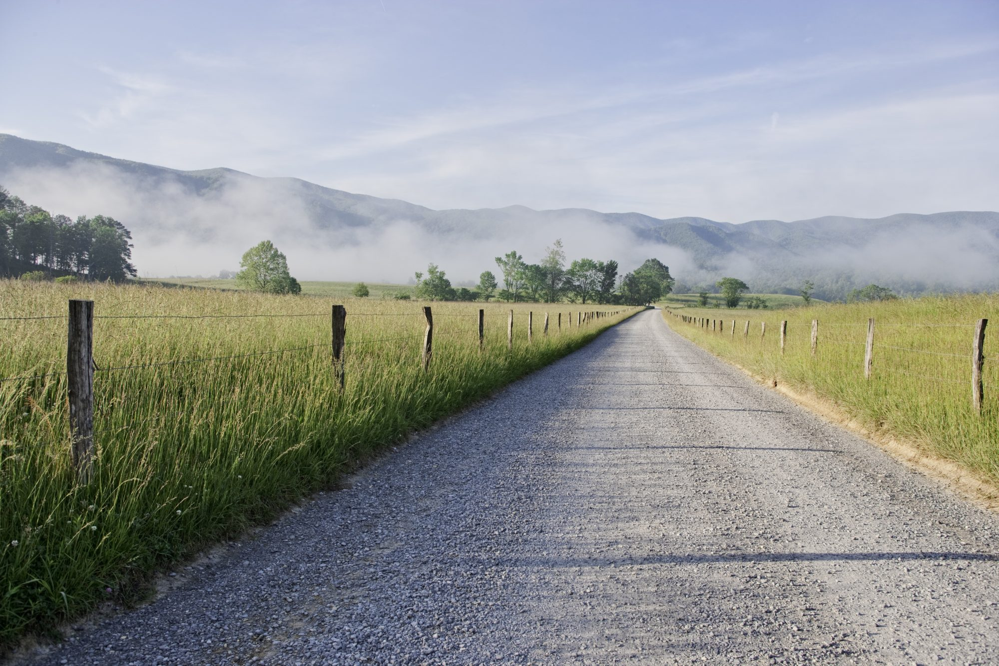 Country road in early morning in the Cades Cove area of the Smokies