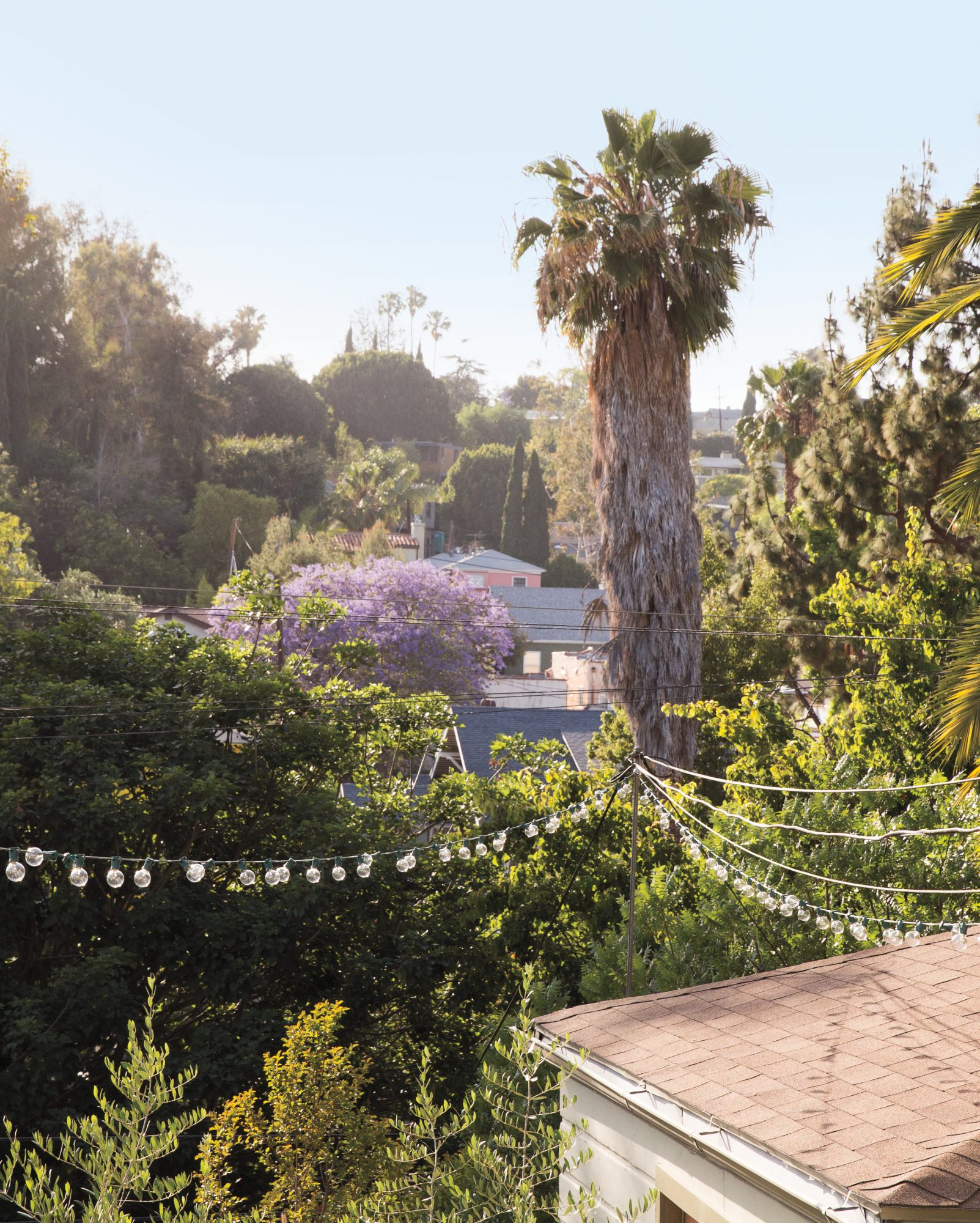 view from Michaele's and Johann's Los Angeles home