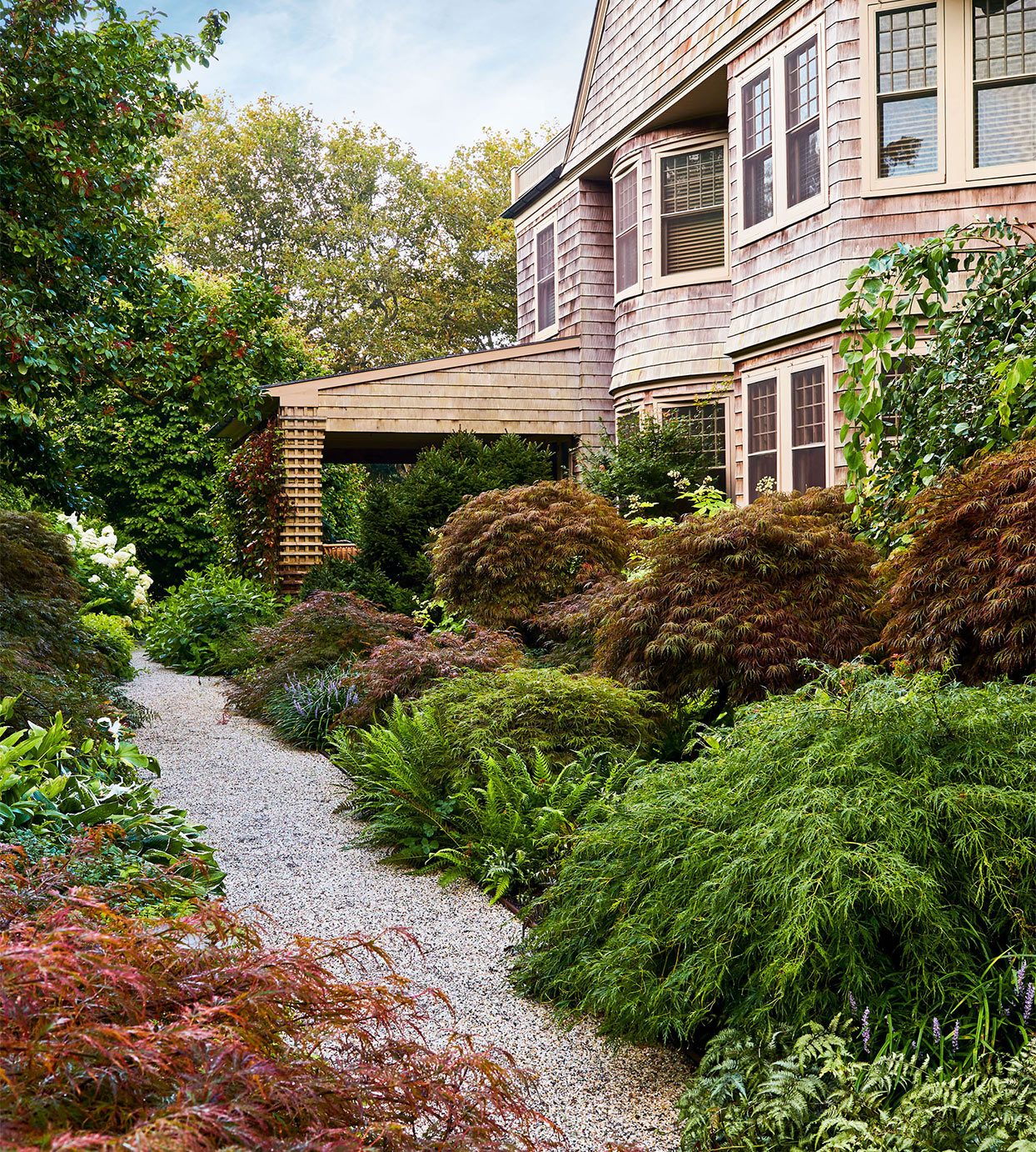 lily pond side yard path with japanese garden