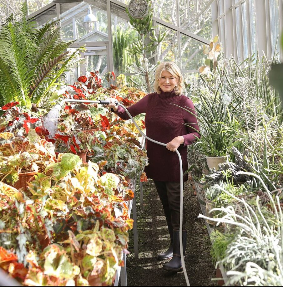 Martha watering plants in greenhouse