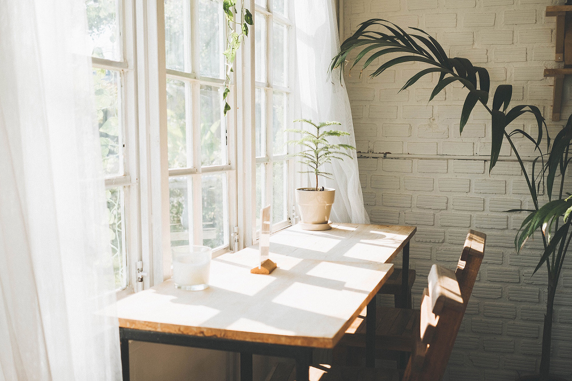 Desk in front of window with plants