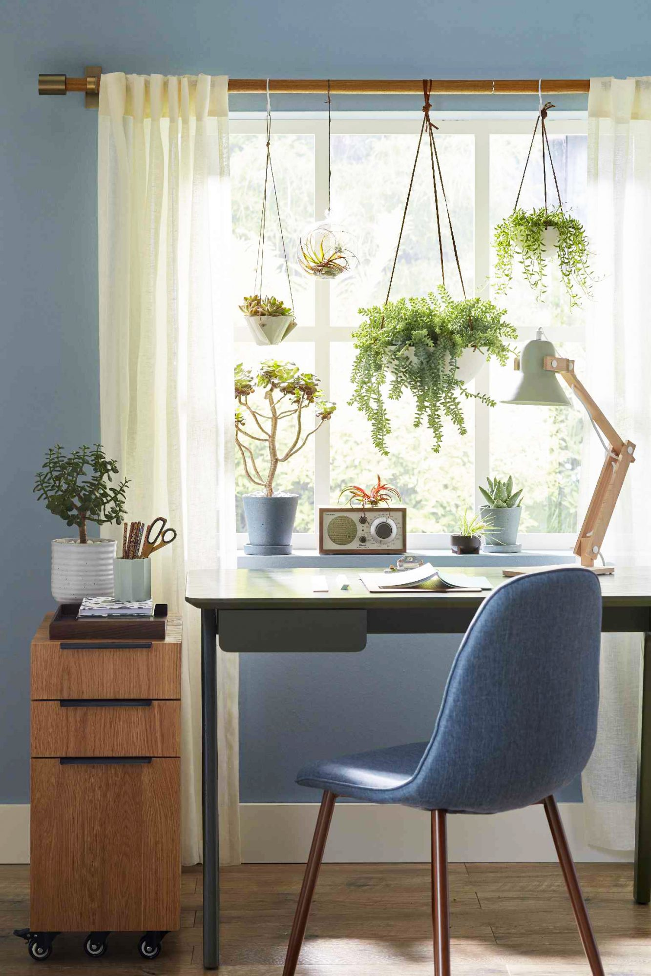 desk decorated with plants