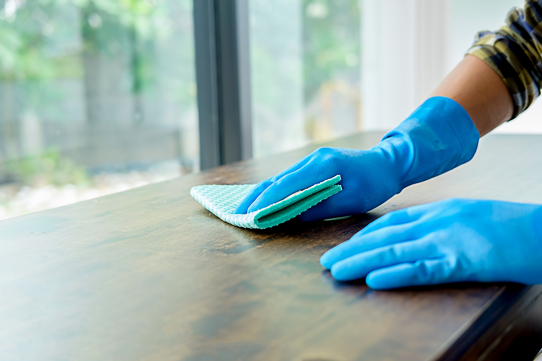Person wearing blue gloves dusting wooden table